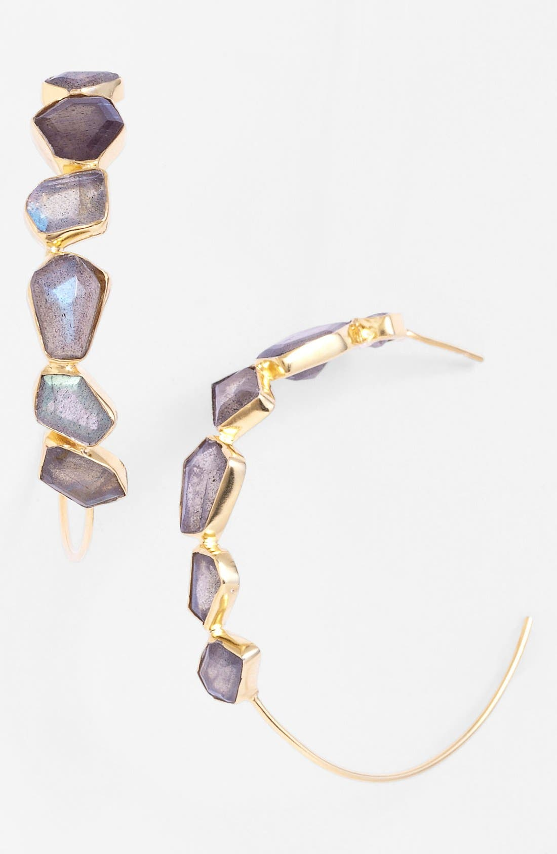 Main Image - NuNu Designs Hoop Earrings