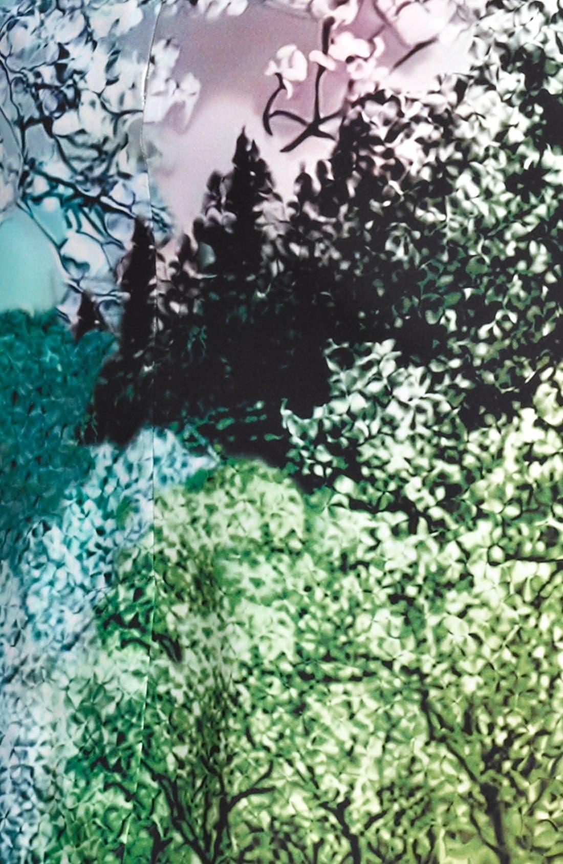 Alternate Image 3  - Mary Katrantzou Print Silk Dress
