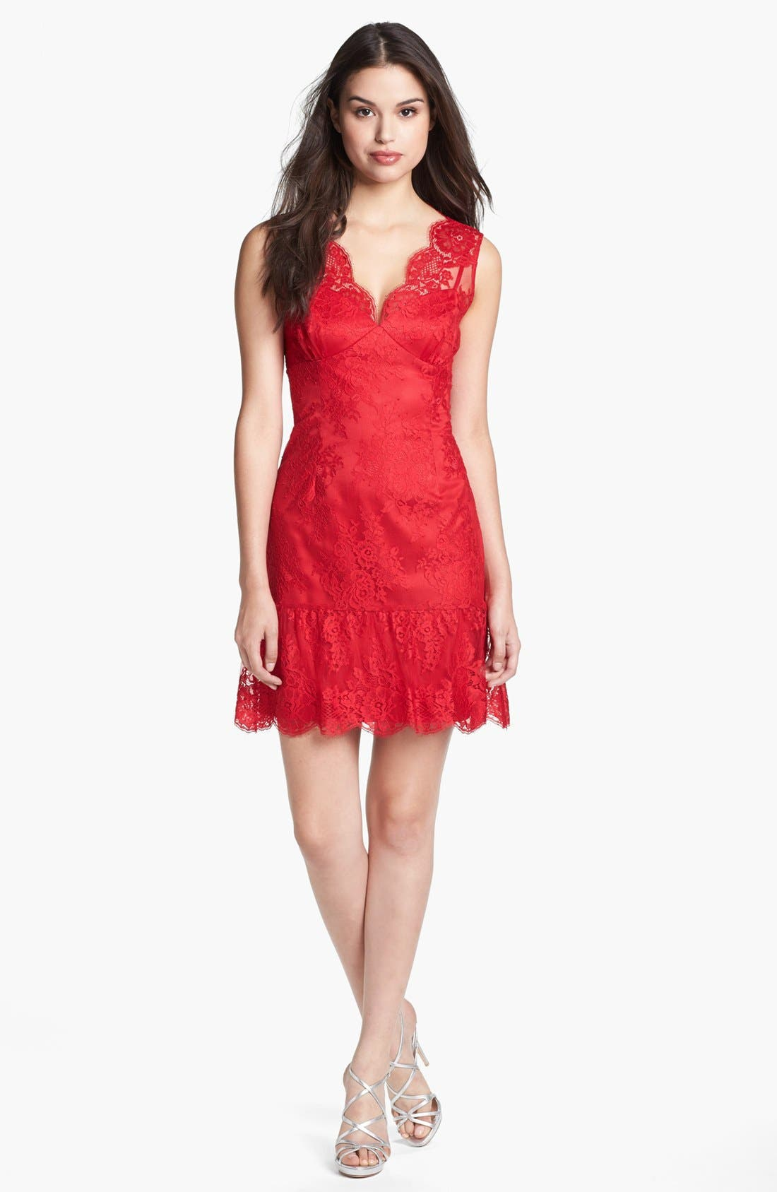Alternate Image 1 Selected - Adrianna Papell Chantilly Lace Dress