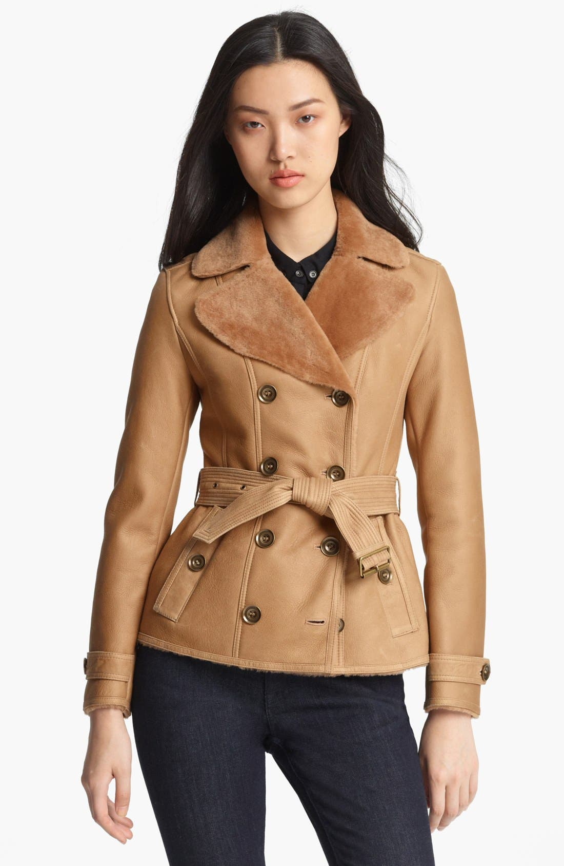 Main Image - Burberry Brit 'Chedleigh' Genuine Shearling Coat