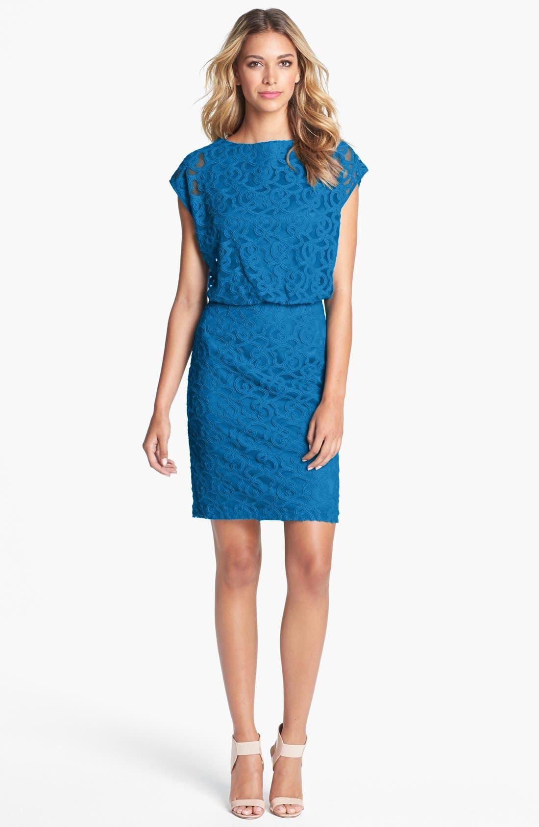Alternate Image 1 Selected - Adrianna Papell Lace Blouson Dress (Petite)