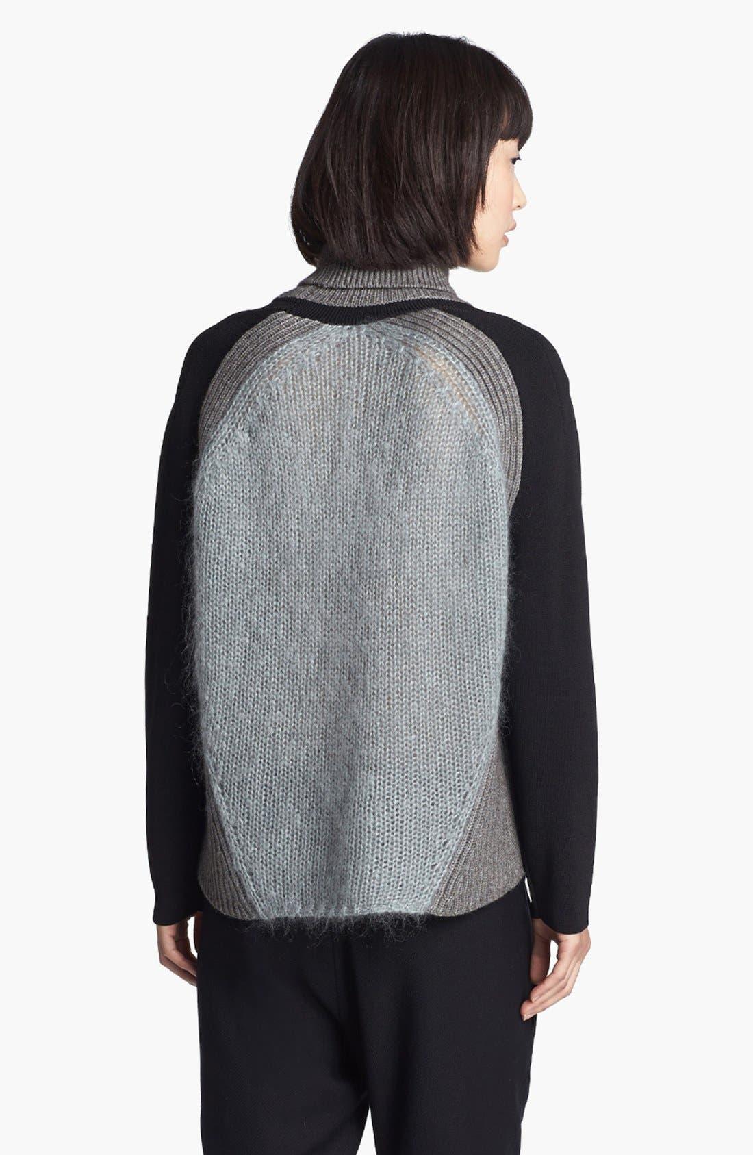 Alternate Image 3  - Helmut Lang Colorblock Turtleneck Sweater