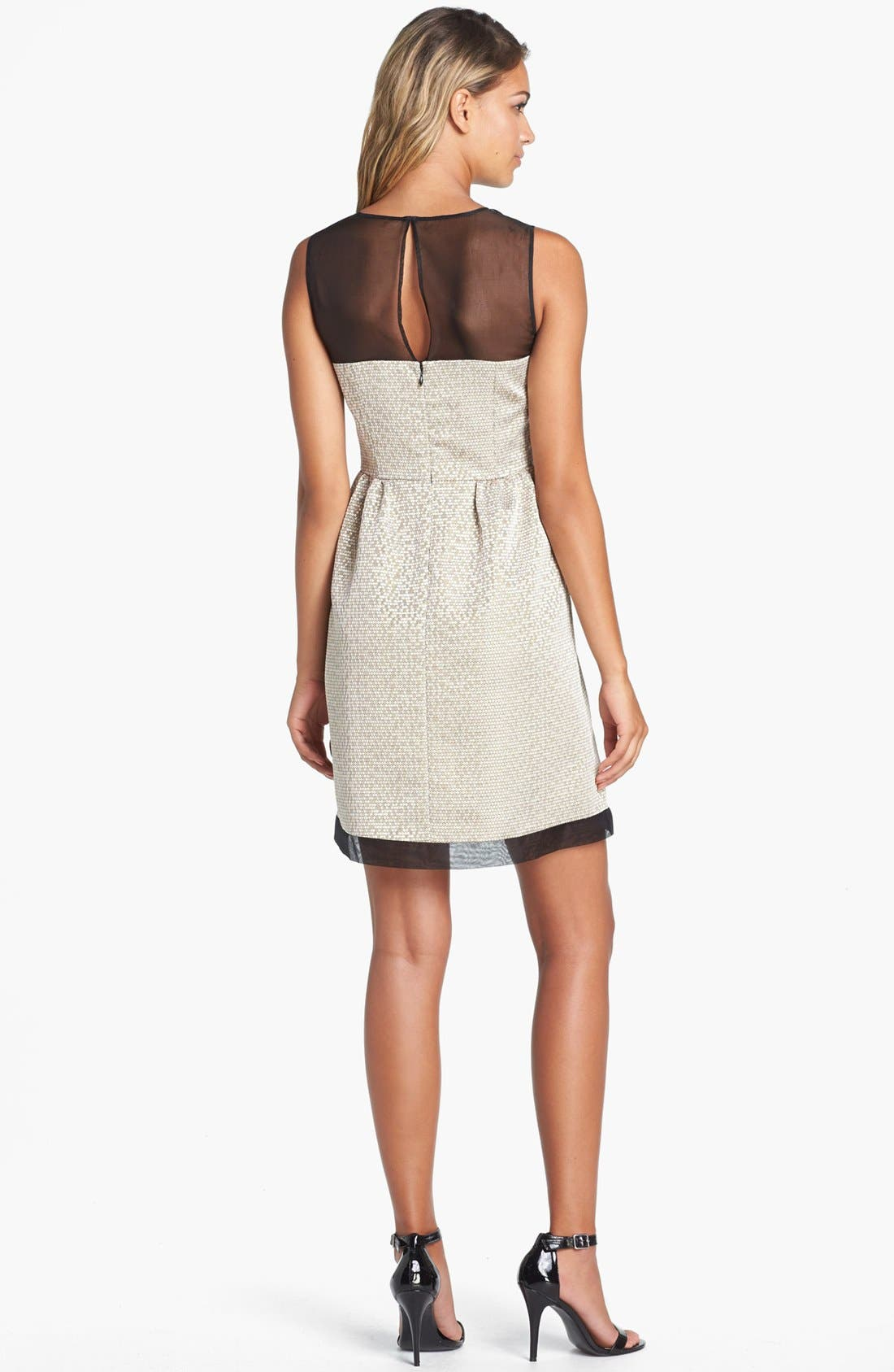 Alternate Image 2  - Ivy & Blu Jacquard Fit & Flare Dress