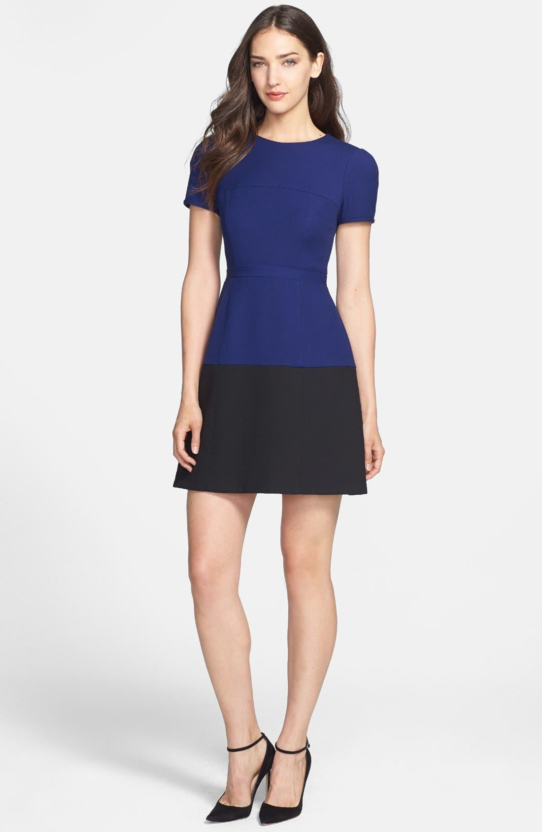 Main Image - BCBGMAXAZRIA 'Hannah' Colorblock Fit & Flare Dress