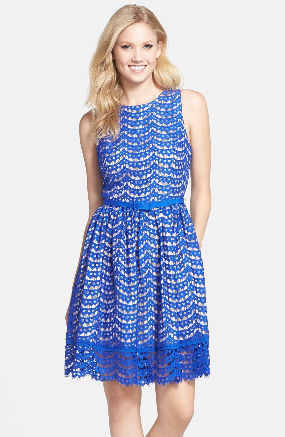 eliza j belted lace fit flare dress nordstrom