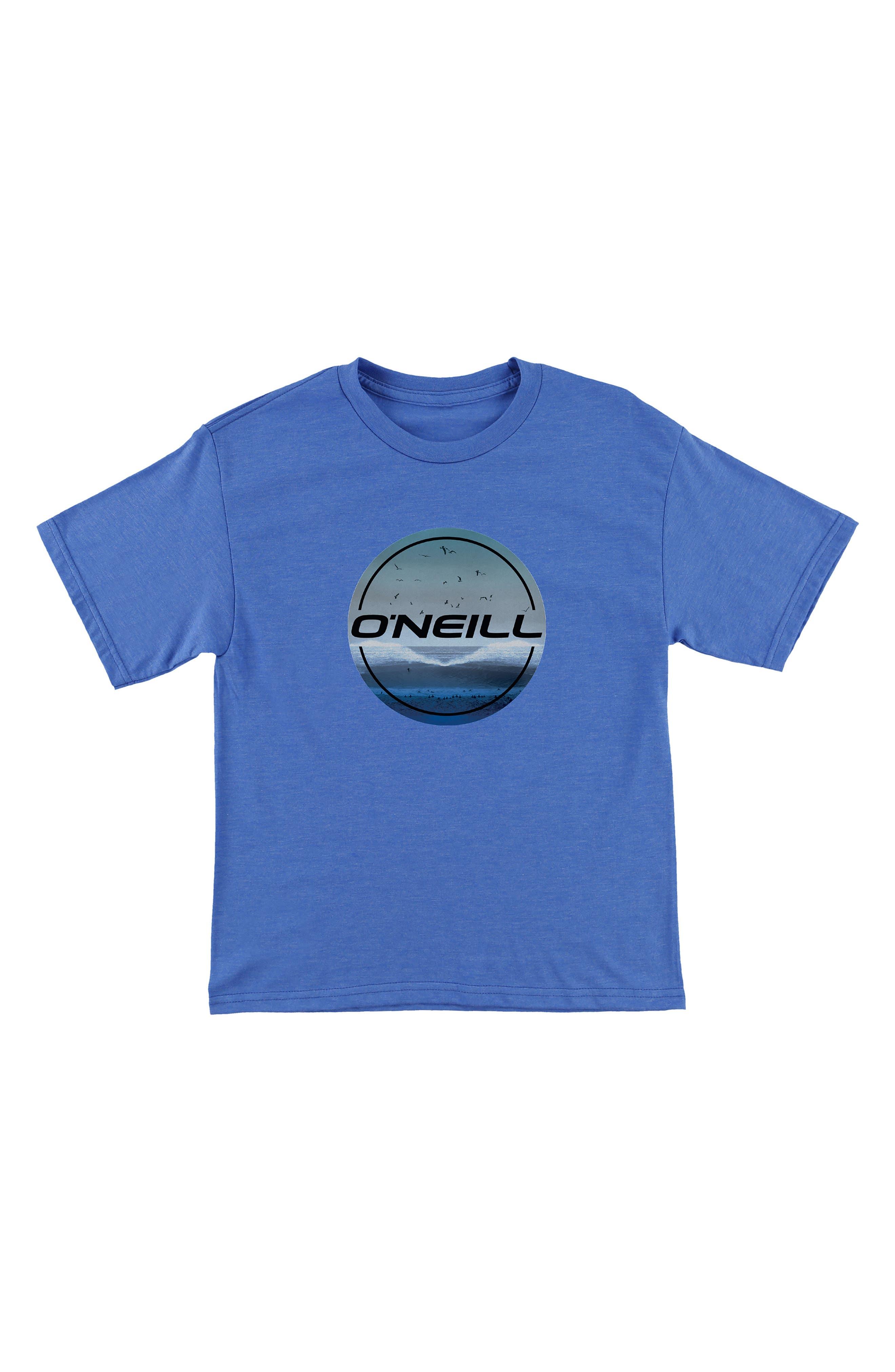 O'Neill Birds Graphic T-Shirt (Big Boys)