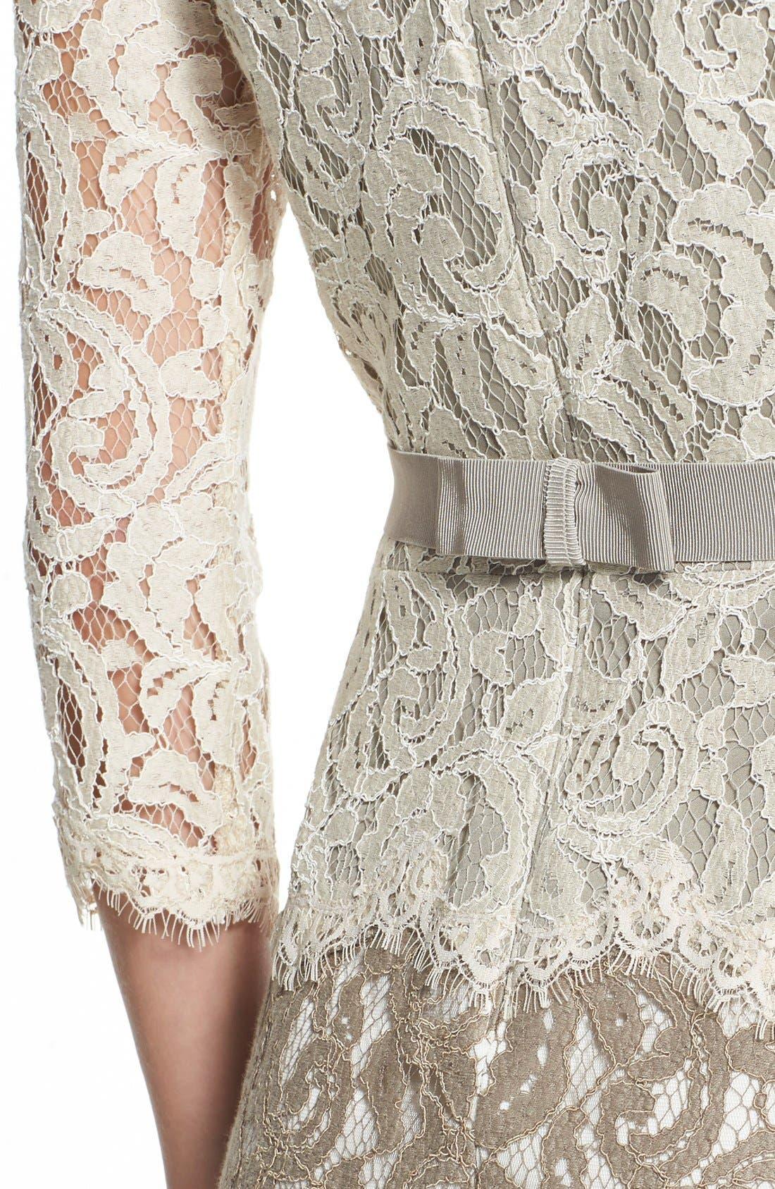 Alternate Image 4  - Tadashi Shoji Two-Tone Lace Sheath Dress (Regular & Petite)