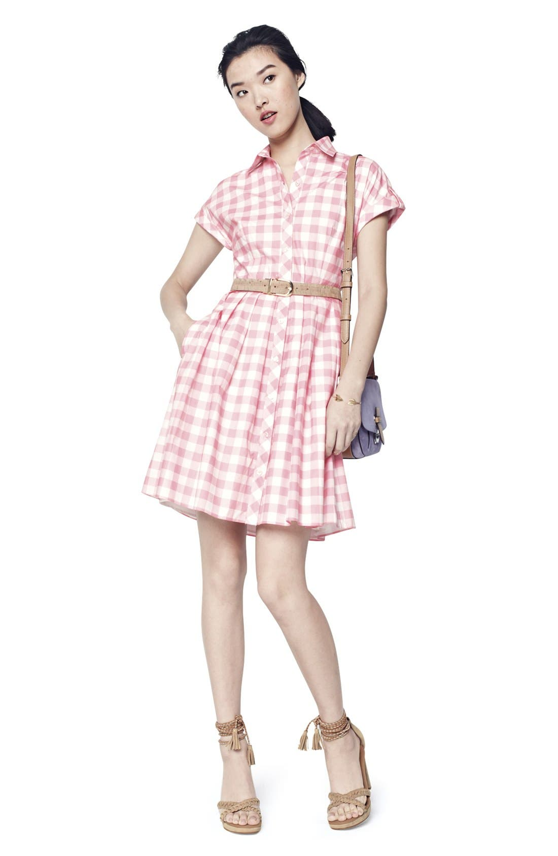 Alternate Image 7  - Eliza J Check Cotton Poplin Shirtdress
