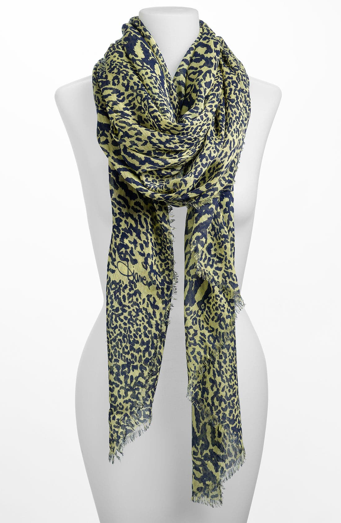 Alternate Image 1 Selected - Diane von Furstenberg 'Kenley' Scarf