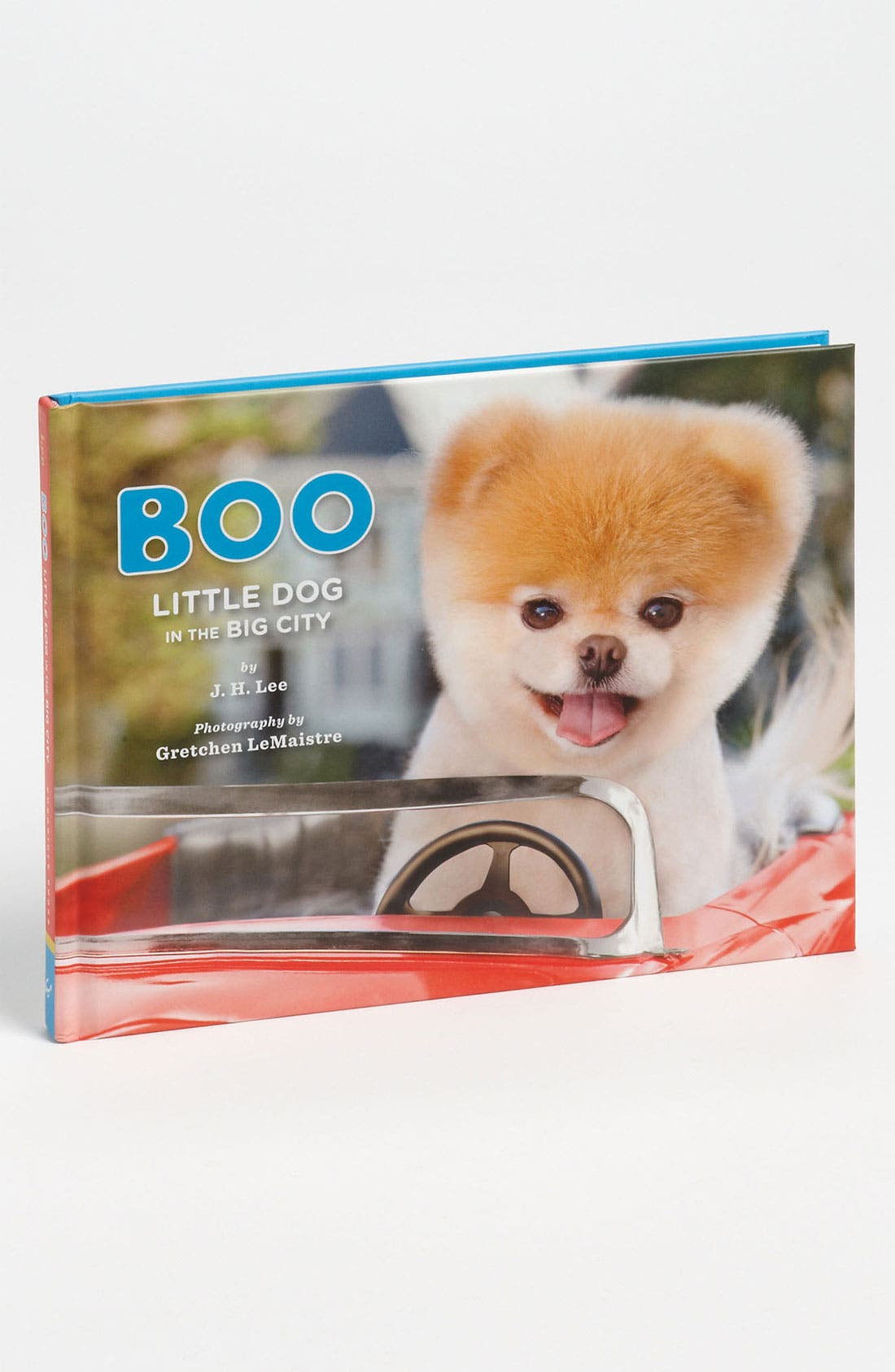 Alternate Image 1 Selected - Boo: Little Dog in the Big City' Book