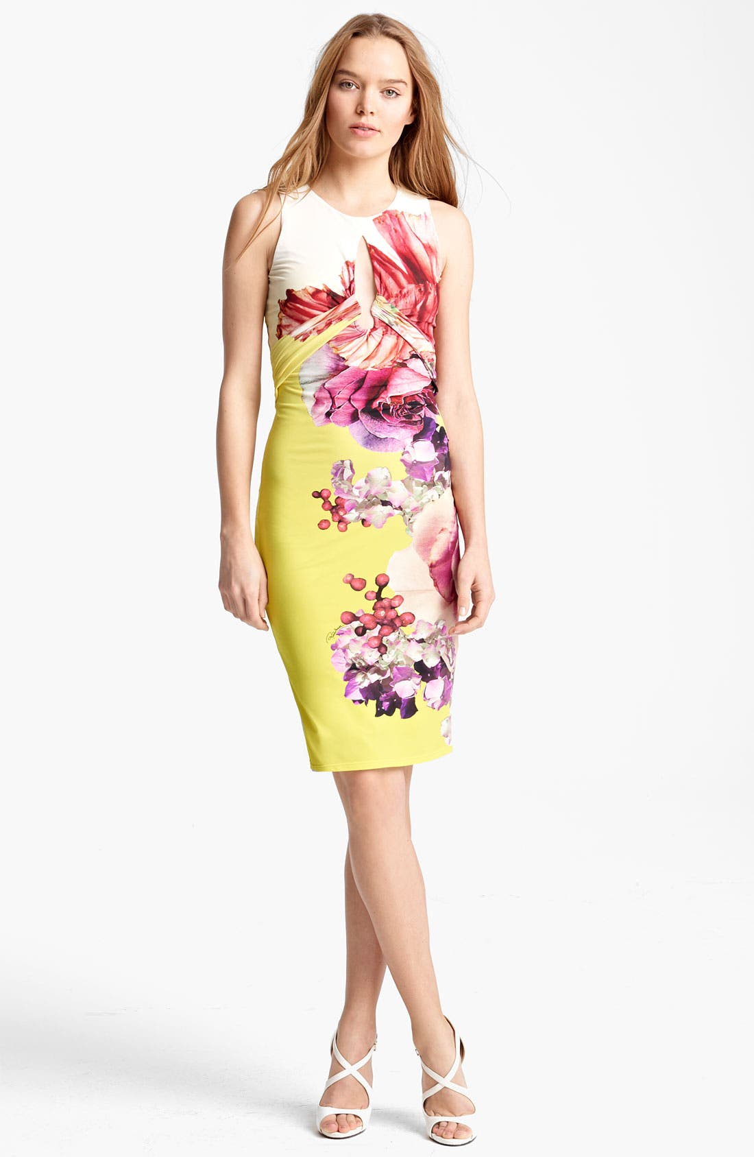 Alternate Image 1 Selected - Roberto Cavalli 'Vervienne Print' Sheath Dress