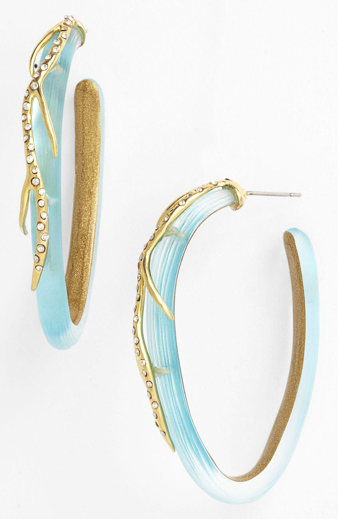 Alternate Image 1 Selected - Alexis Bittar 'Ophelia' Vine Hoop Earrings