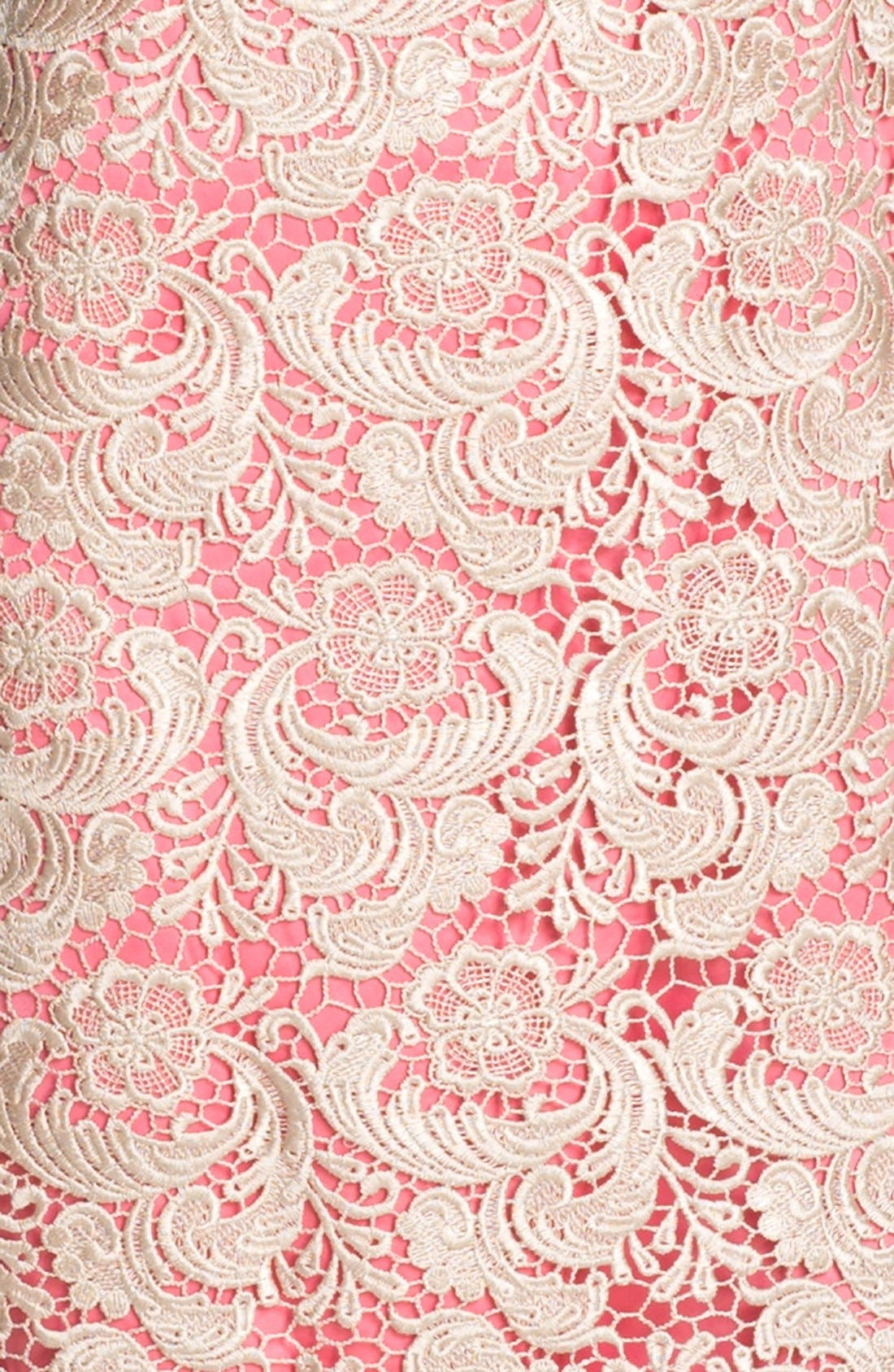 Alternate Image 3  - Eliza J Sleeveless Lace Shift Dress