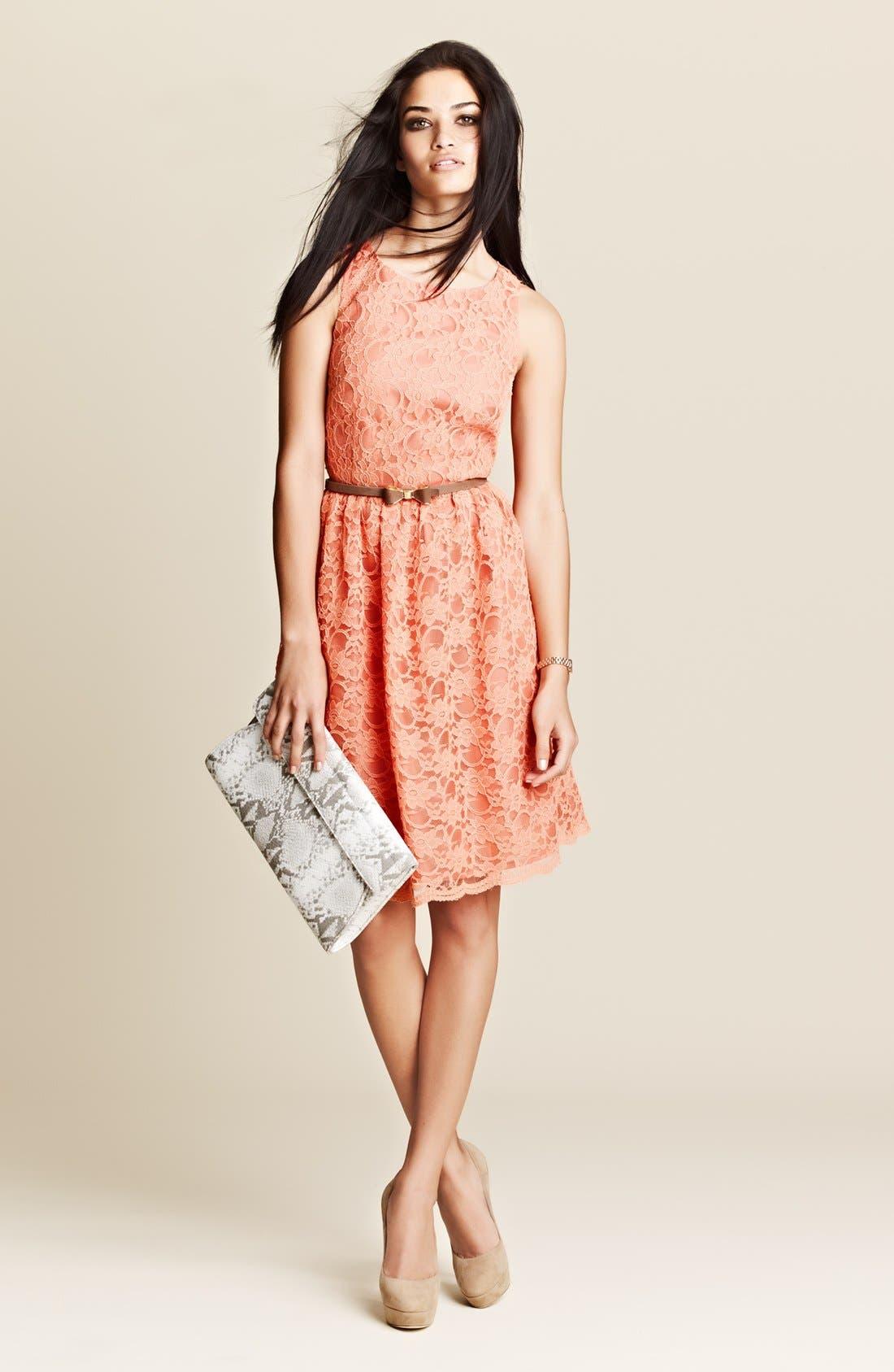 Alternate Image 4  - Calvin Klein Sleeveless Lace Fit & Flare Dress