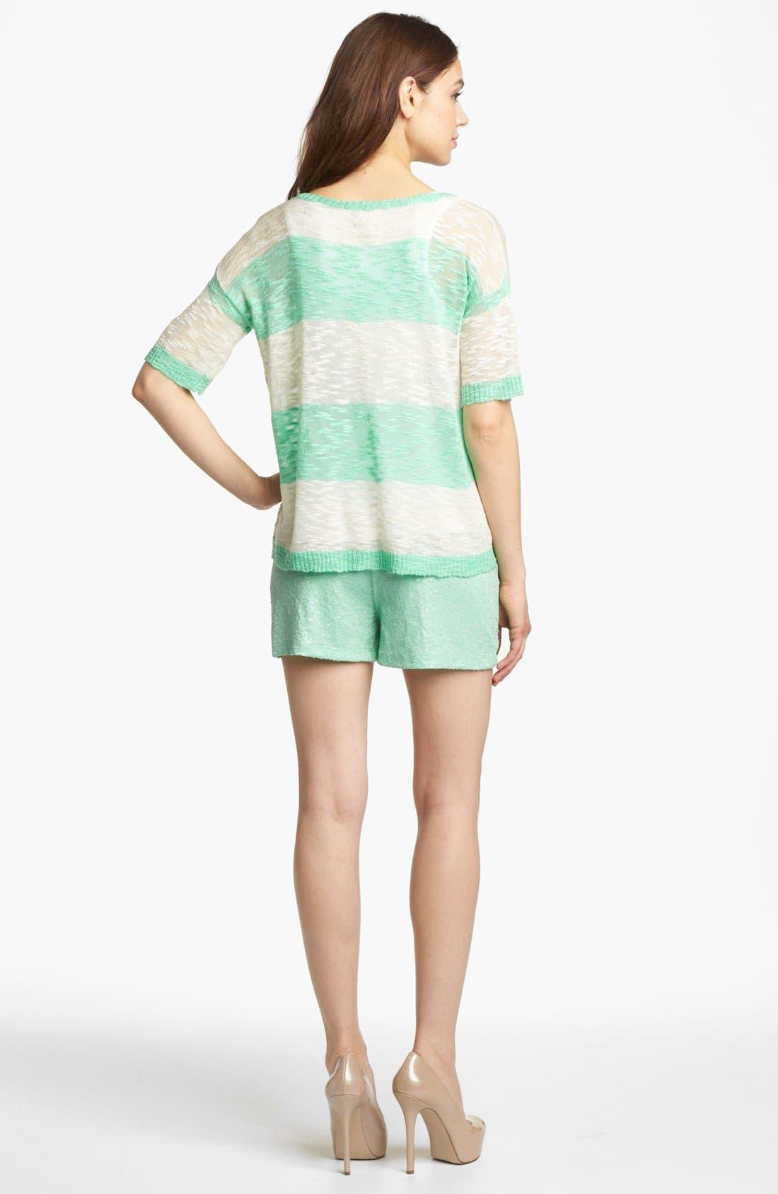 Alternate Image 5  - Kensie Sequin Shorts