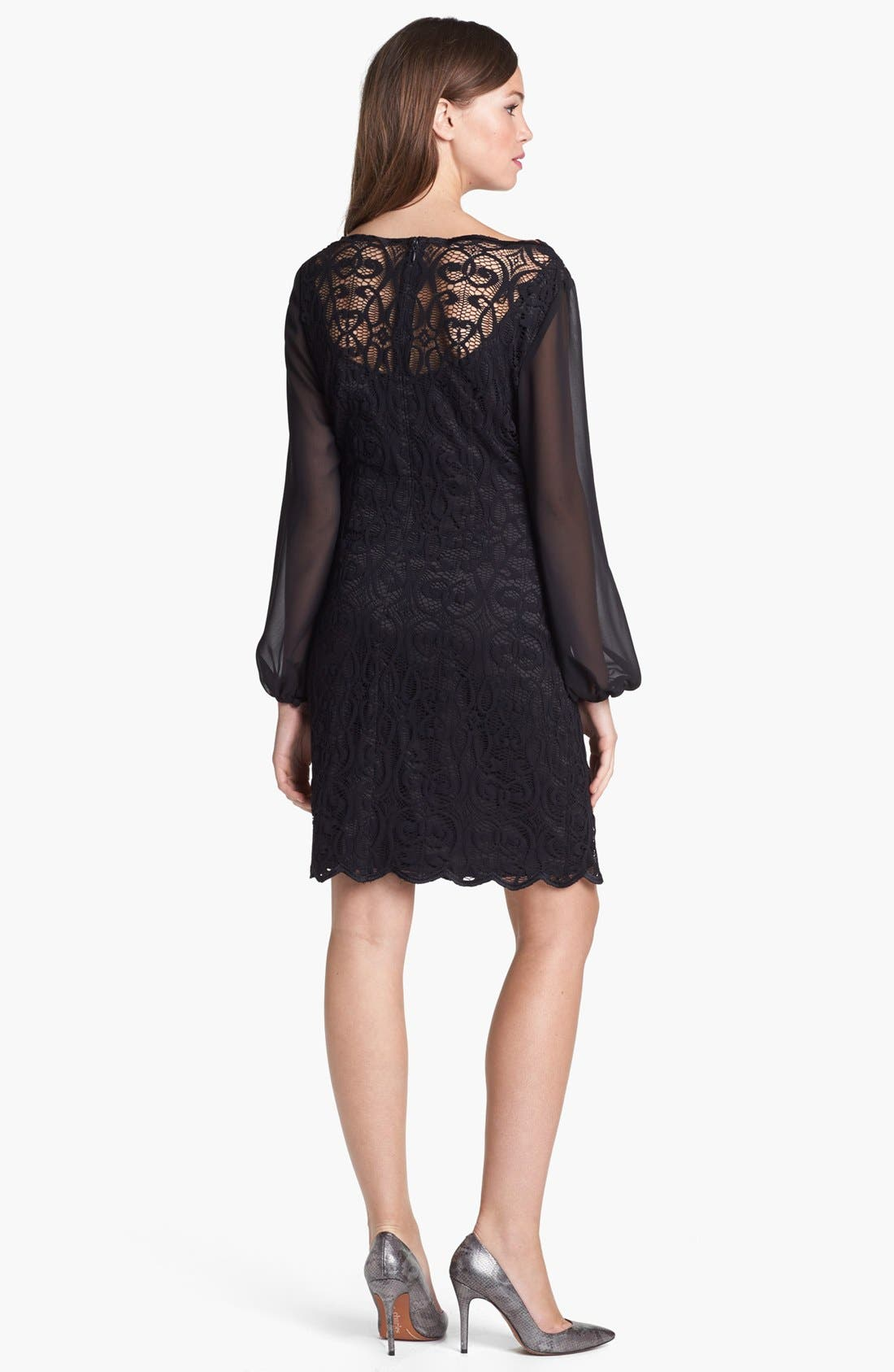 Alternate Image 2  - Adrianna Papell Lace & Chiffon Dress