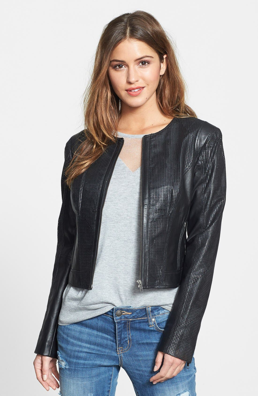 Alternate Image 1 Selected - Halogen® Perforated Leather Jacket
