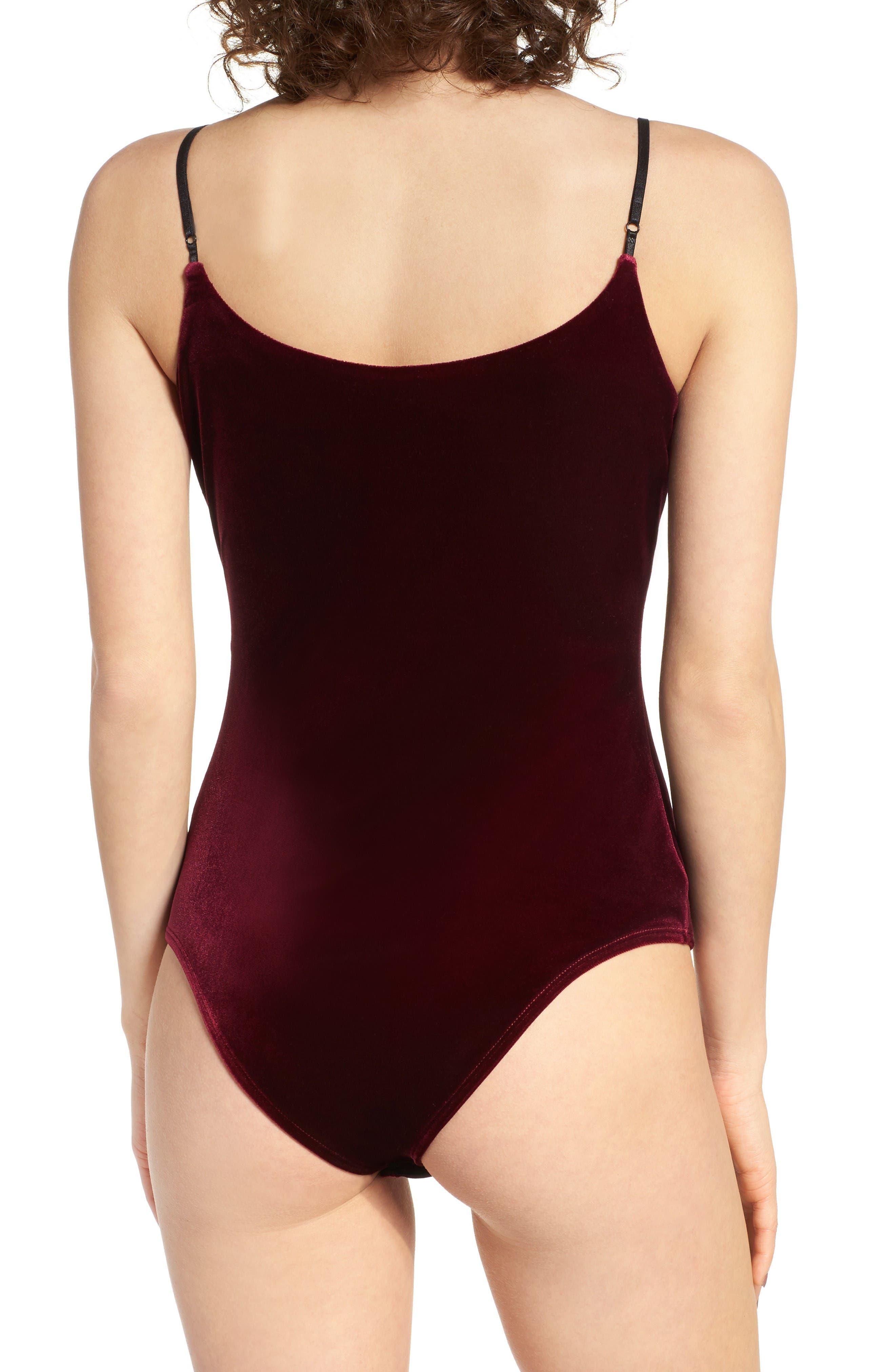 Alternate Image 3  - Socialite Embroidered Velvet Bodysuit