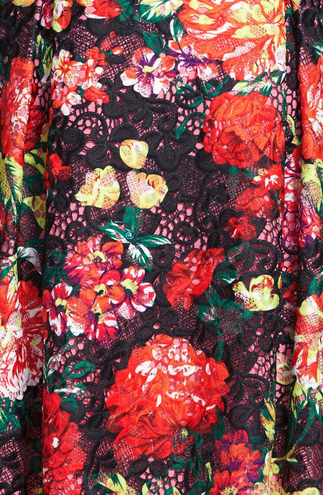 Alternate Image 3  - Adrianna Papell Print Lace Fit & Flare Dress (Plus Size)