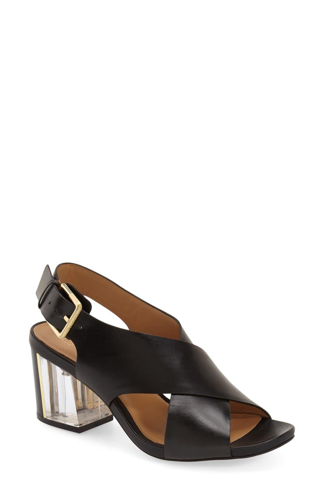 Alternate Image 1 Selected - Calvin Klein 'Loni' Clear Block Heel Sandal (Women)