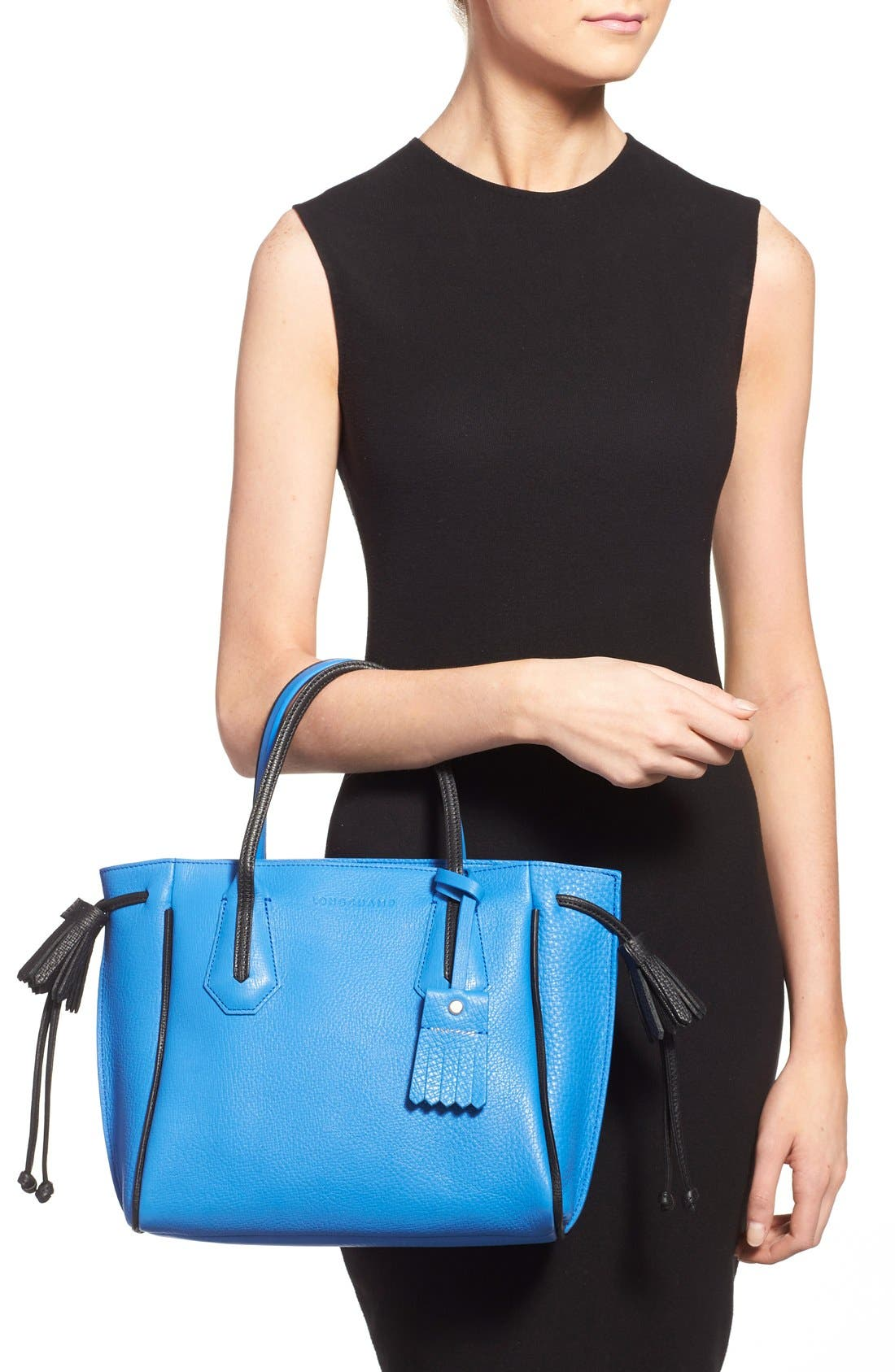 Alternate Image 2  - Longchamp 'Small Penelope Fantasie' Leather Tote