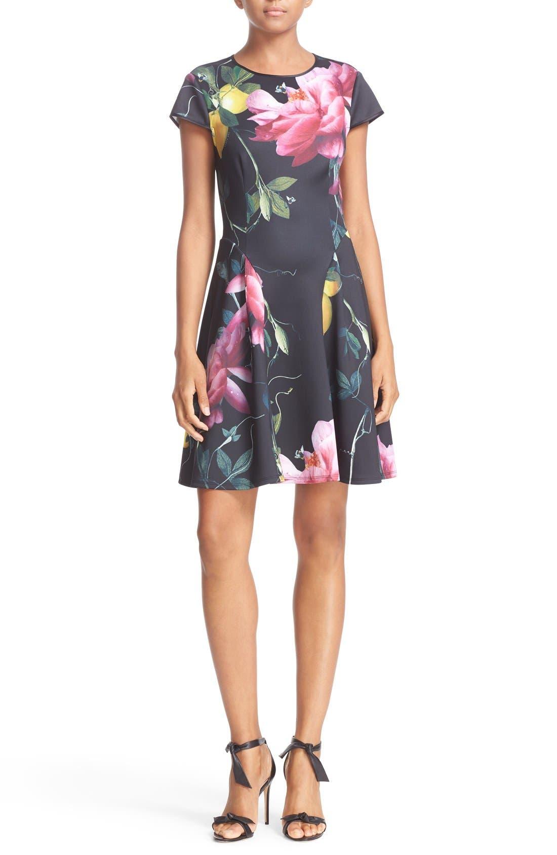 Main Image - Ted Baker London 'Allisia' Print Skater Dress