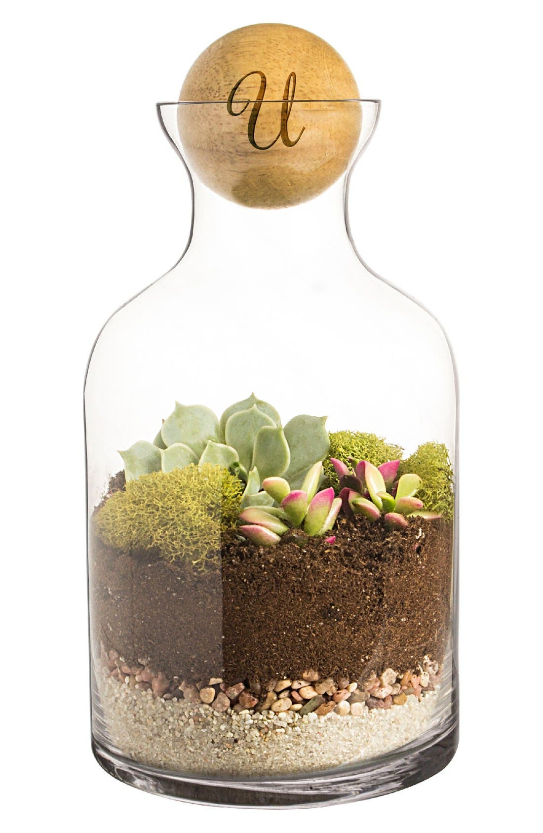 Alternate Image 1 Selected - Cathy's Concepts Monogram Glass Terrarium