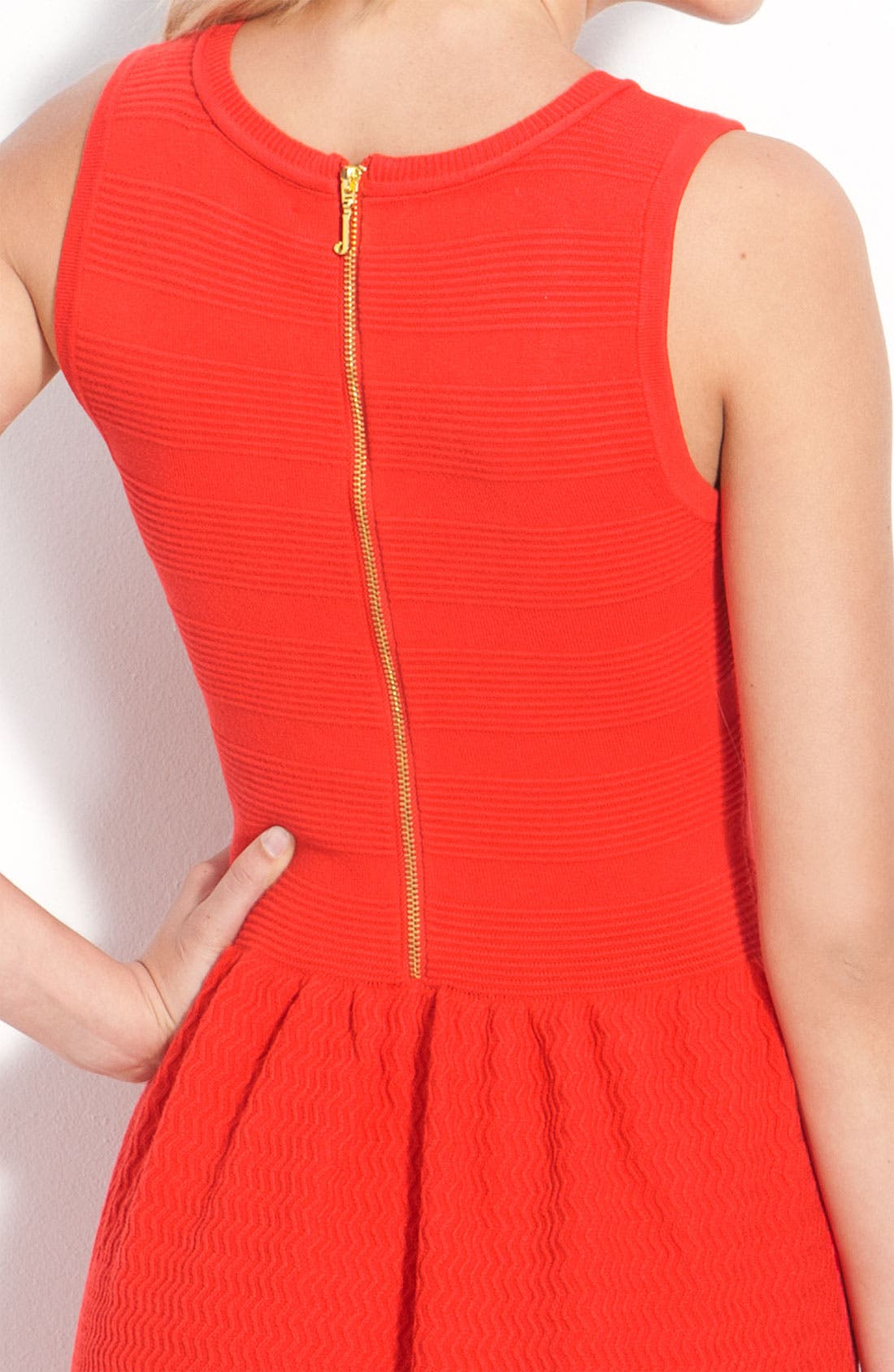 Alternate Image 3  - Juicy Couture Sleeveless Textured Dress