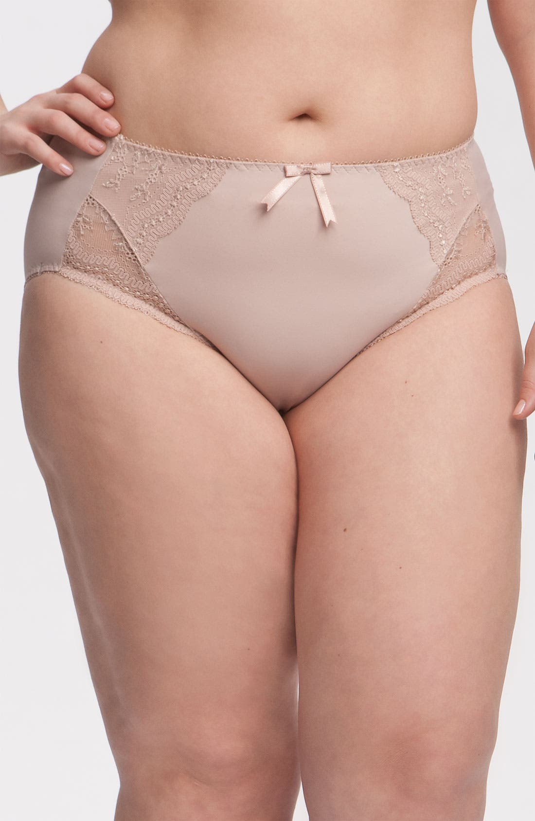 Alternate Image 1 Selected - Elomi 'Hermione' Briefs (Plus Size)
