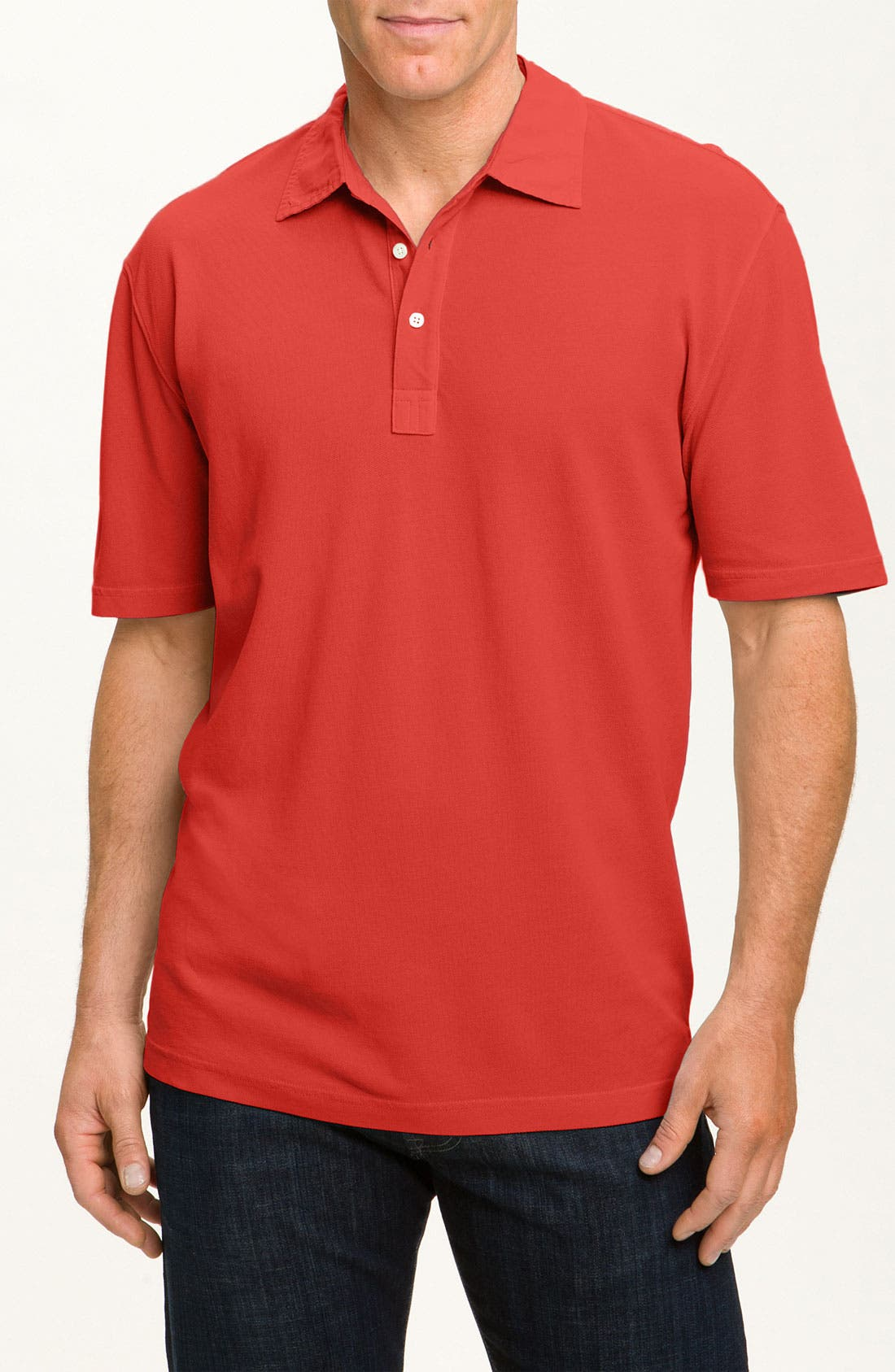 Alternate Image 1 Selected - Robert Talbott Garment Dyed Polo