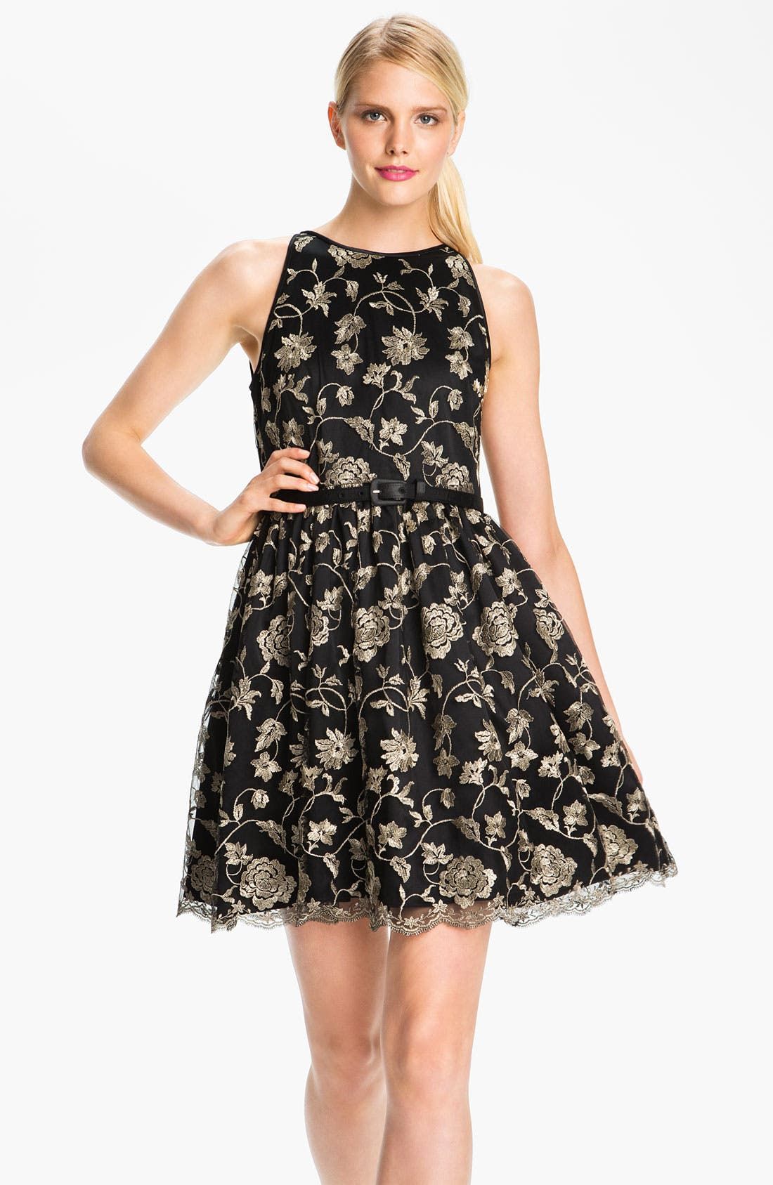 Alternate Image 1 Selected - Adrianna Papell Embroidered Tulle Fit & Flare Dress