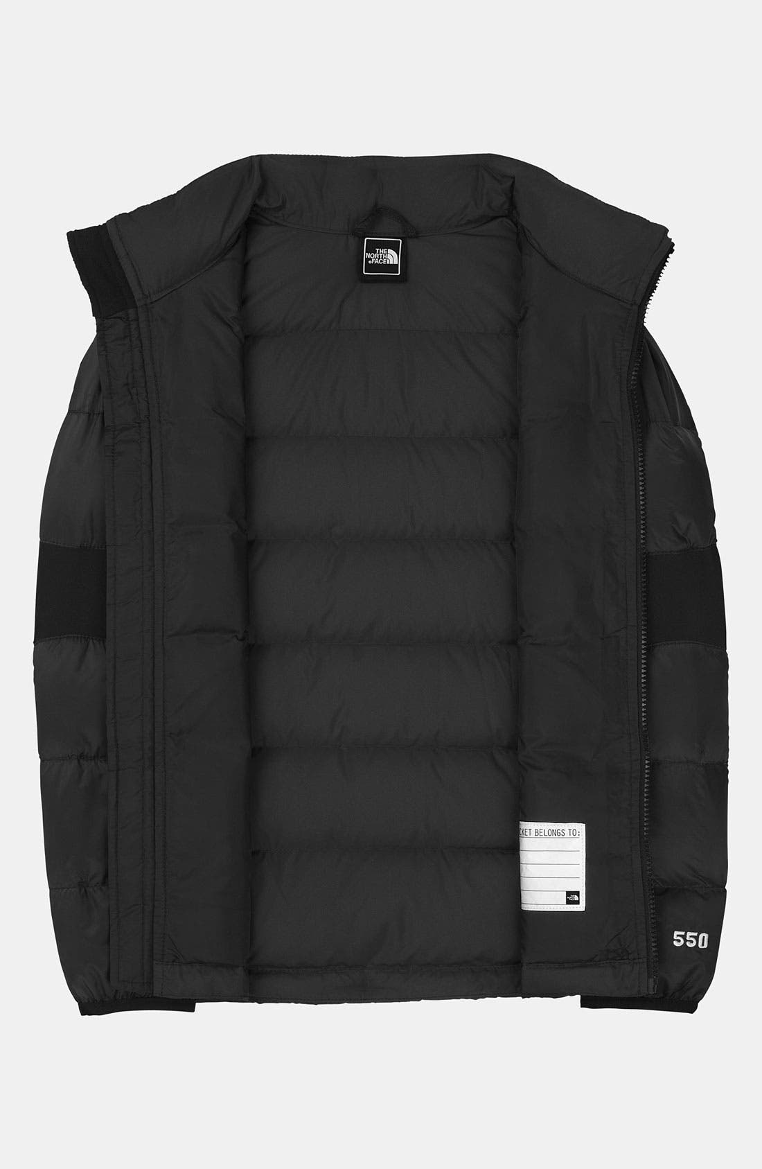Alternate Image 2  - The North Face 'Lil' Crympt' Down Jacket (Big Boys)