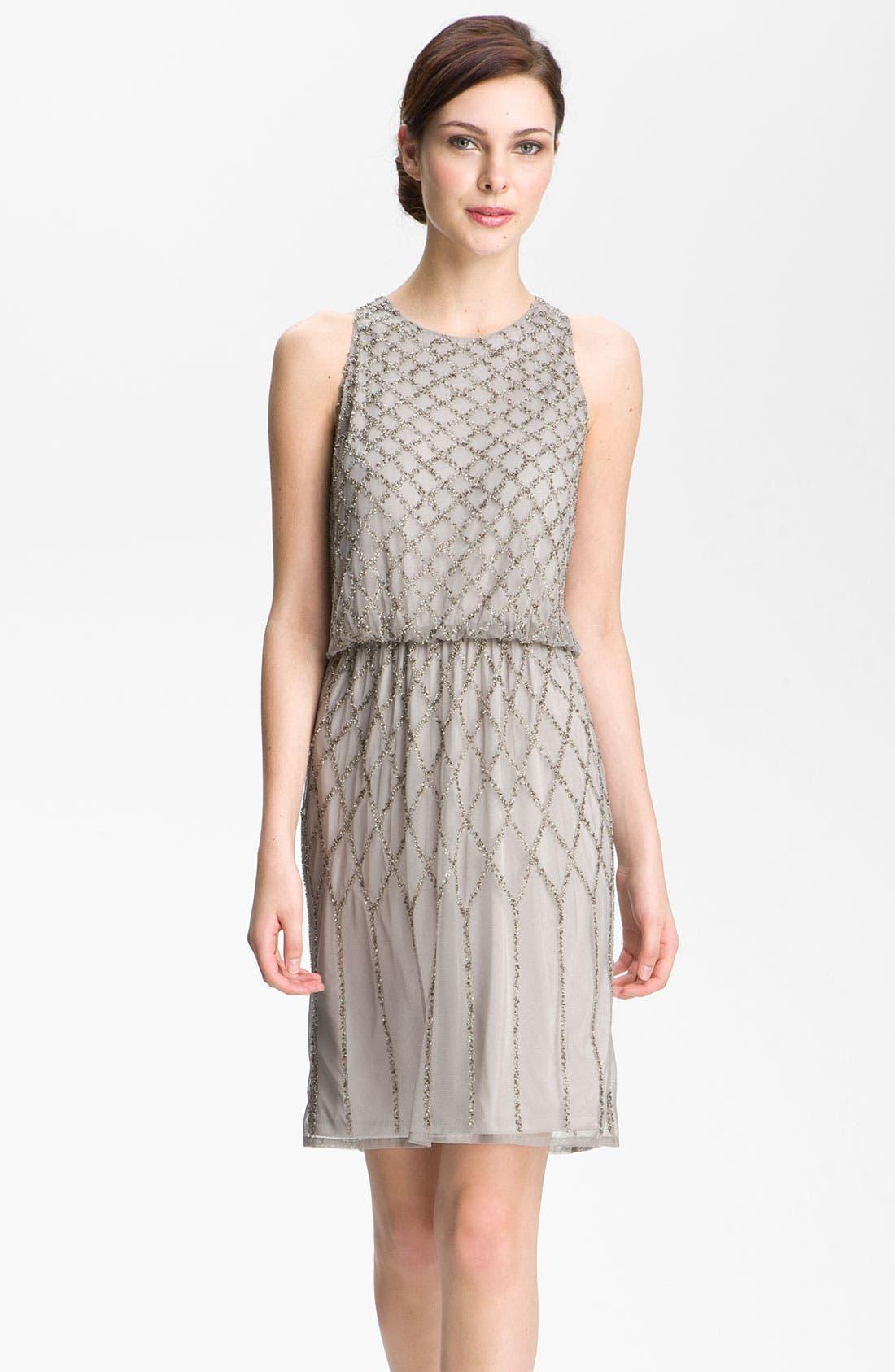 Alternate Image 1 Selected - Adrianna Papell Beaded Blouson Dress (Petite)