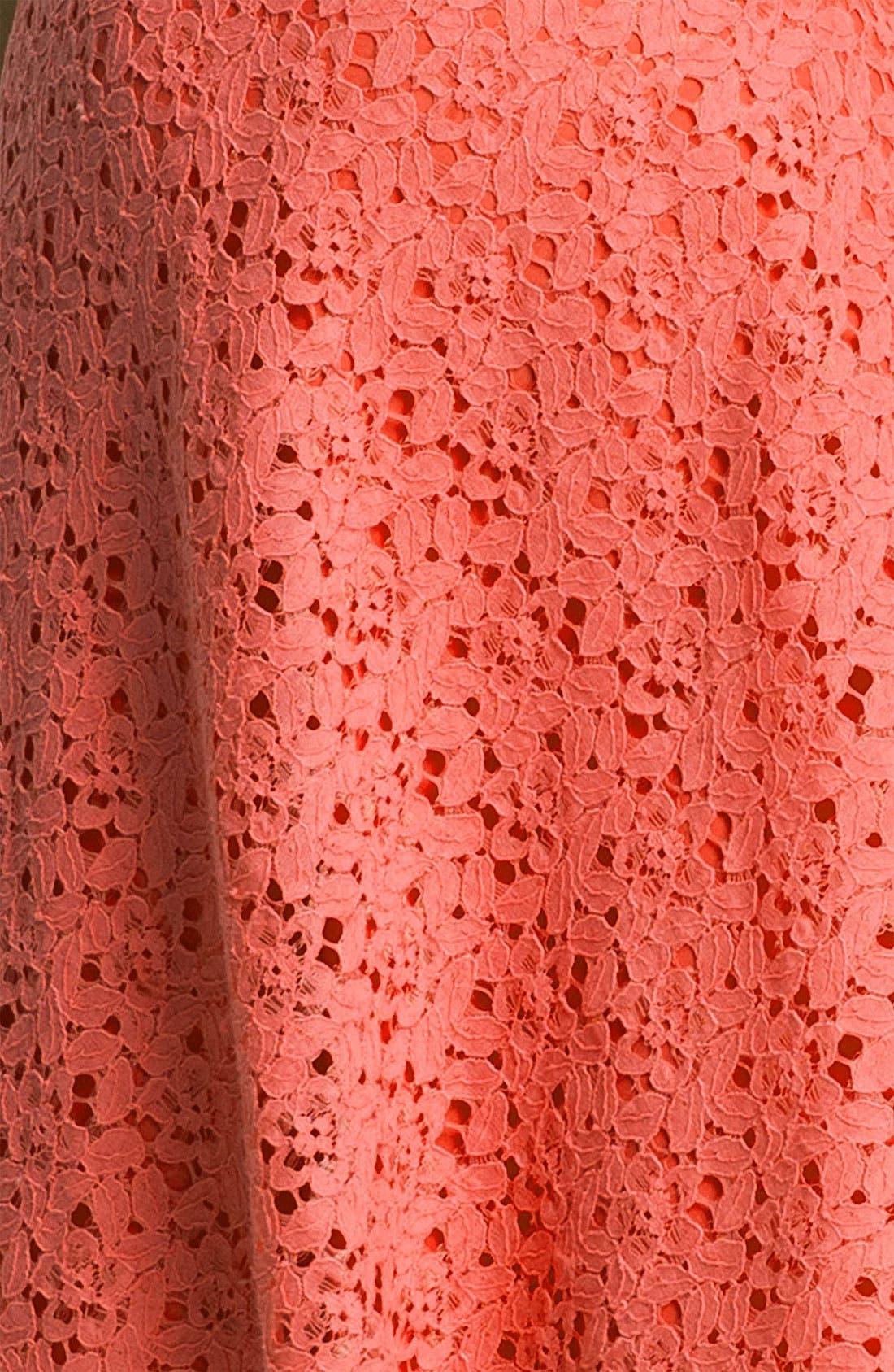 Alternate Image 3  - Betsey Johnson Lace Fit & Flare Dress