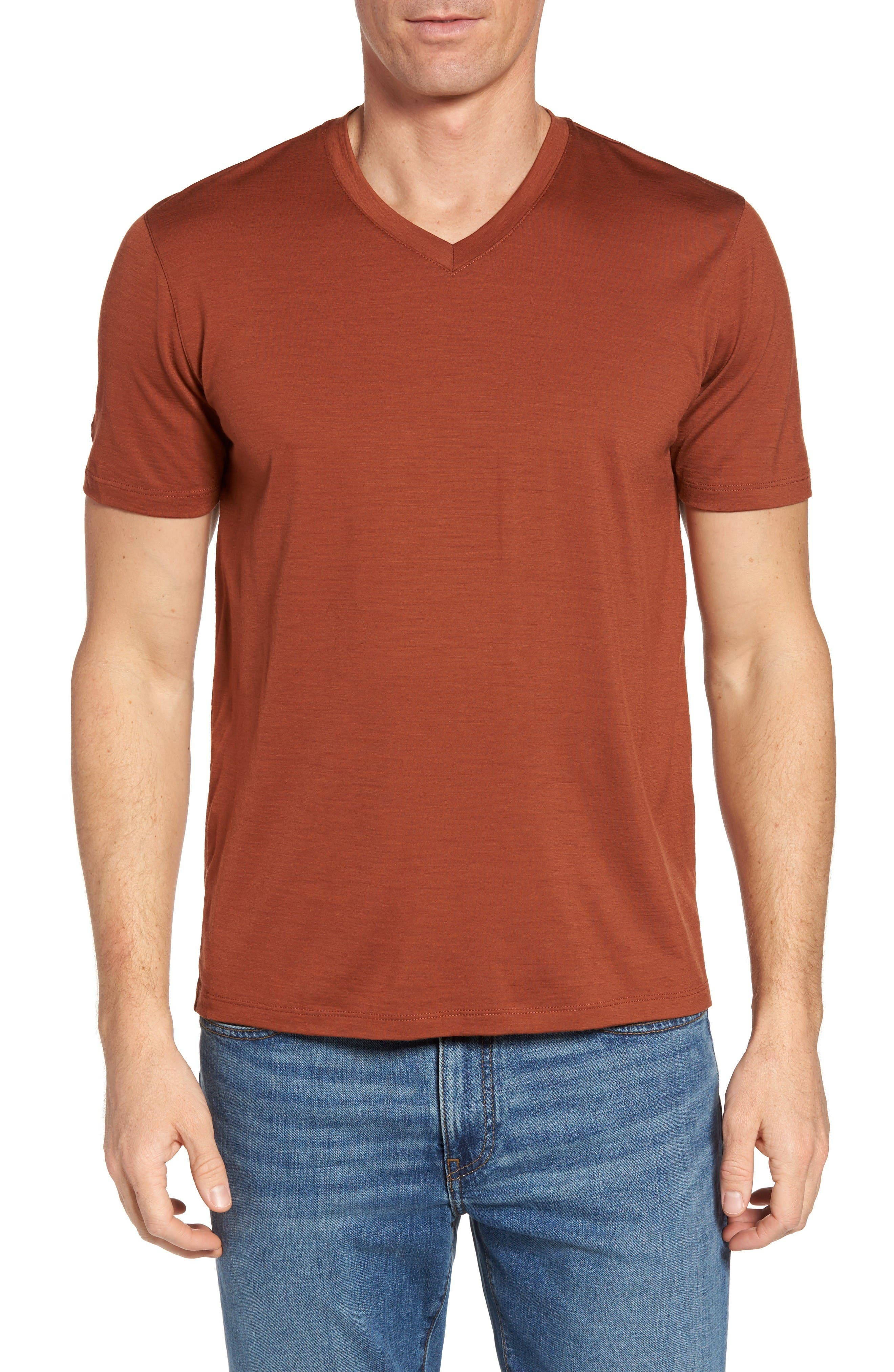 ibex 'Axis' V-Neck Merino Wool Jersey T-Shirt
