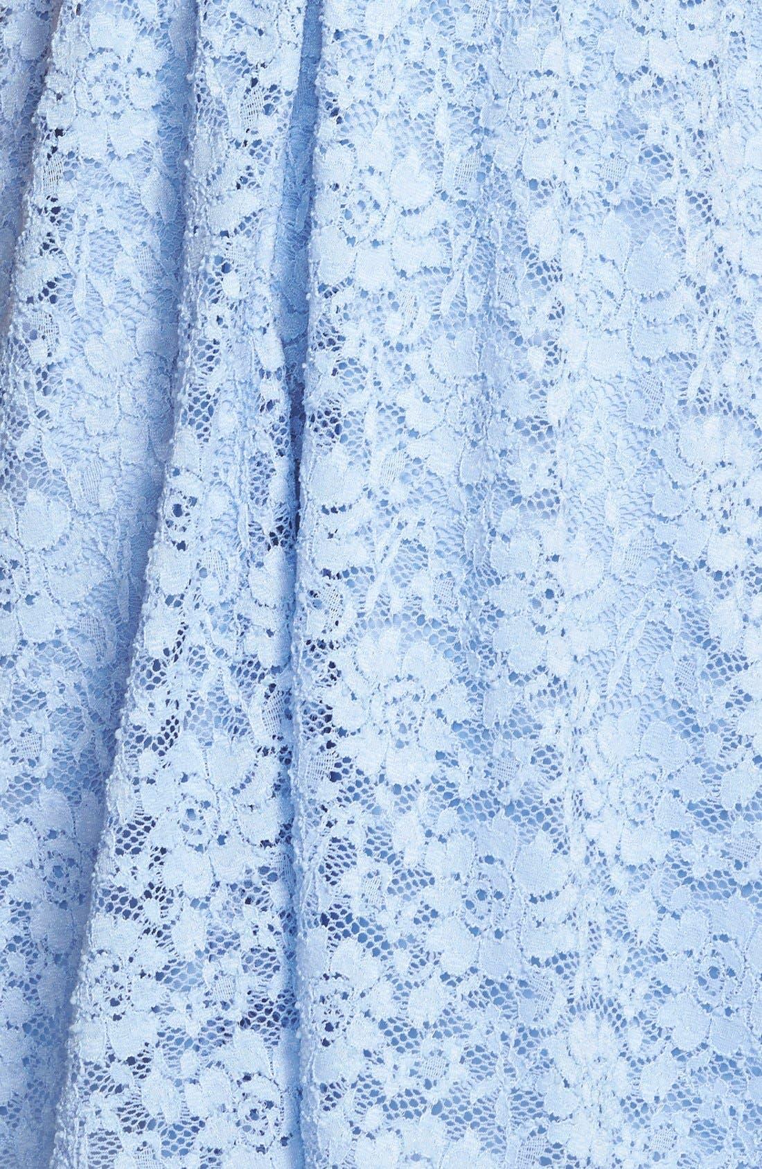 Alternate Image 3  - Lush Lace Skater Dress
