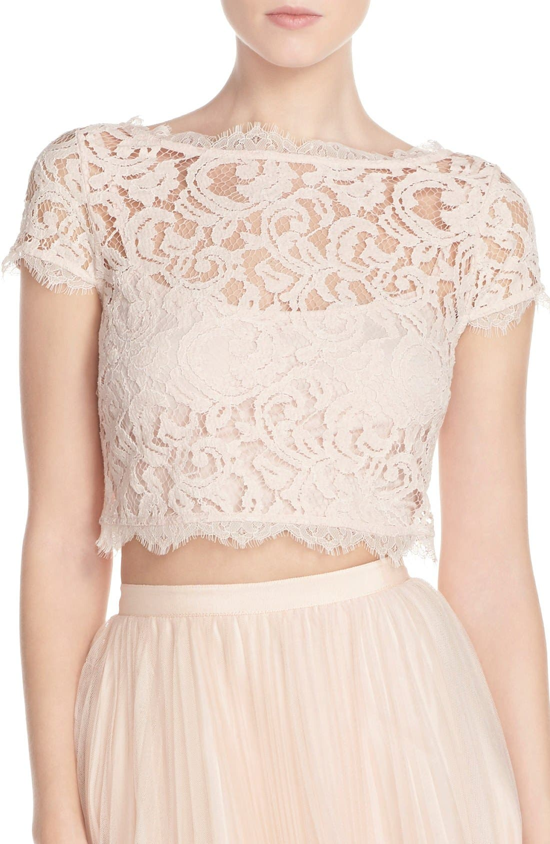 Alternate Image 1 Selected - Adrianna Papell Lace Crop Top