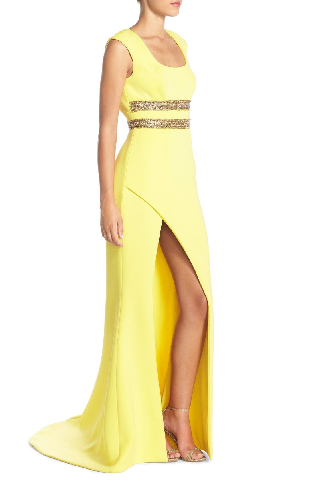 Alternate Image 3  - Terani Couture Open Back Embellished Gown