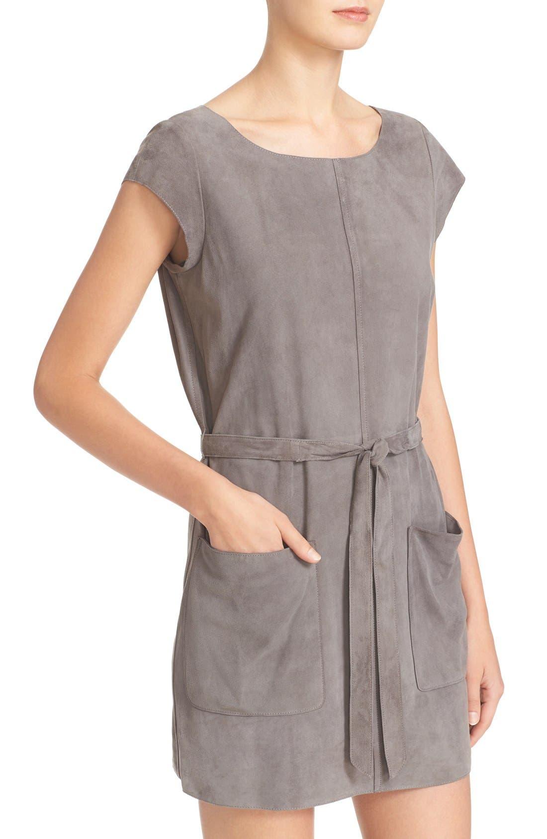 Alternate Image 4  - Joie Maroone Belted Suede Minidress