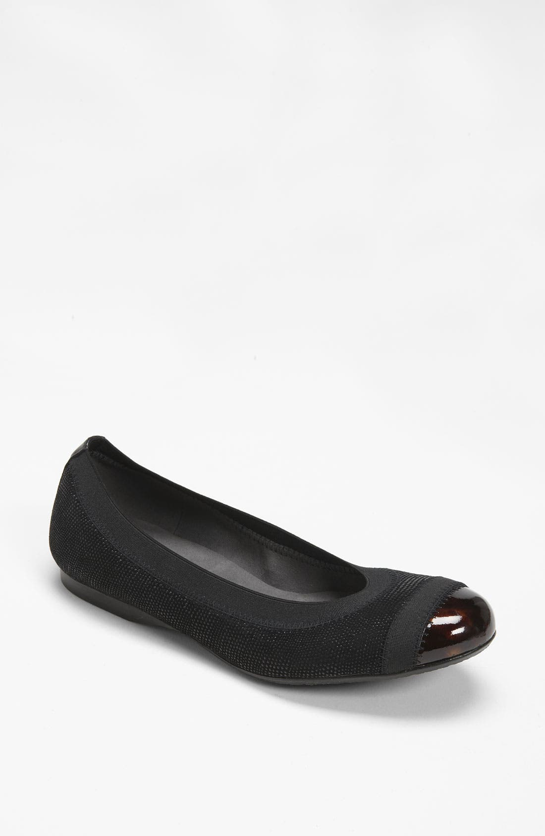 Alternate Image 1 Selected - Stuart Weitzman 'Tipable' Flat