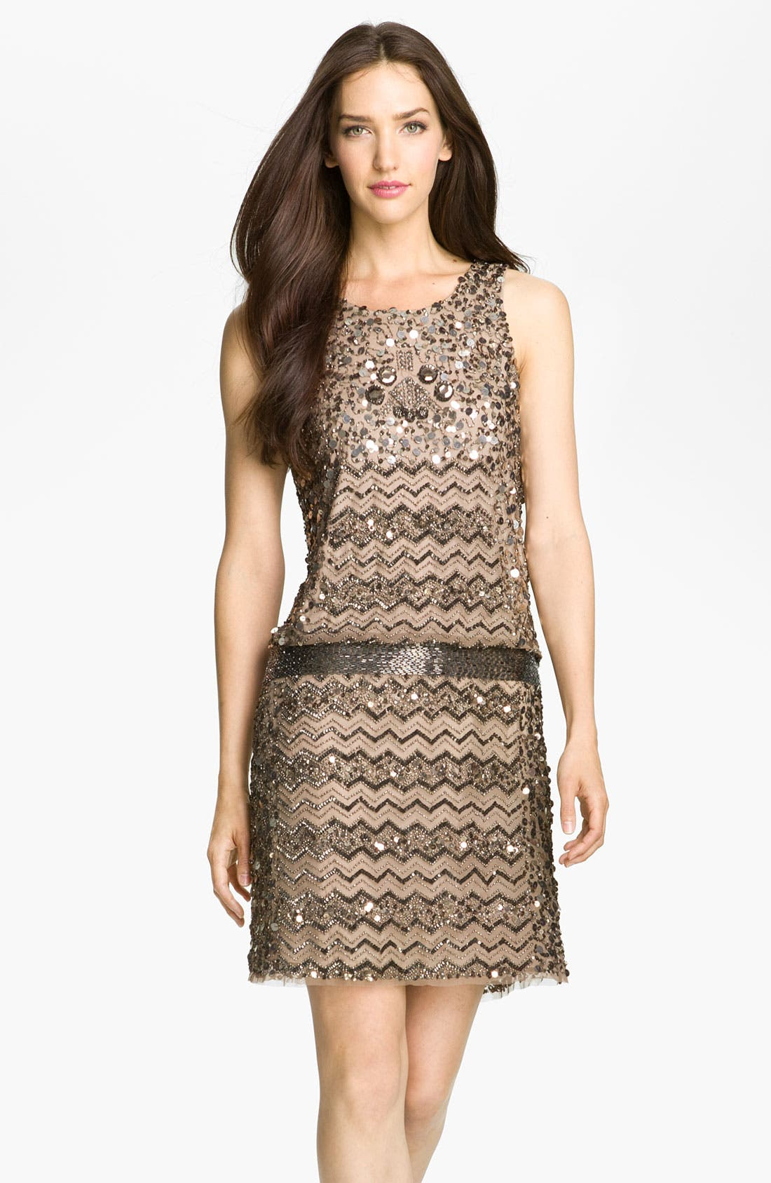 Alternate Image 1 Selected - Adrianna Papell Embellished Zigzag Mesh Dress