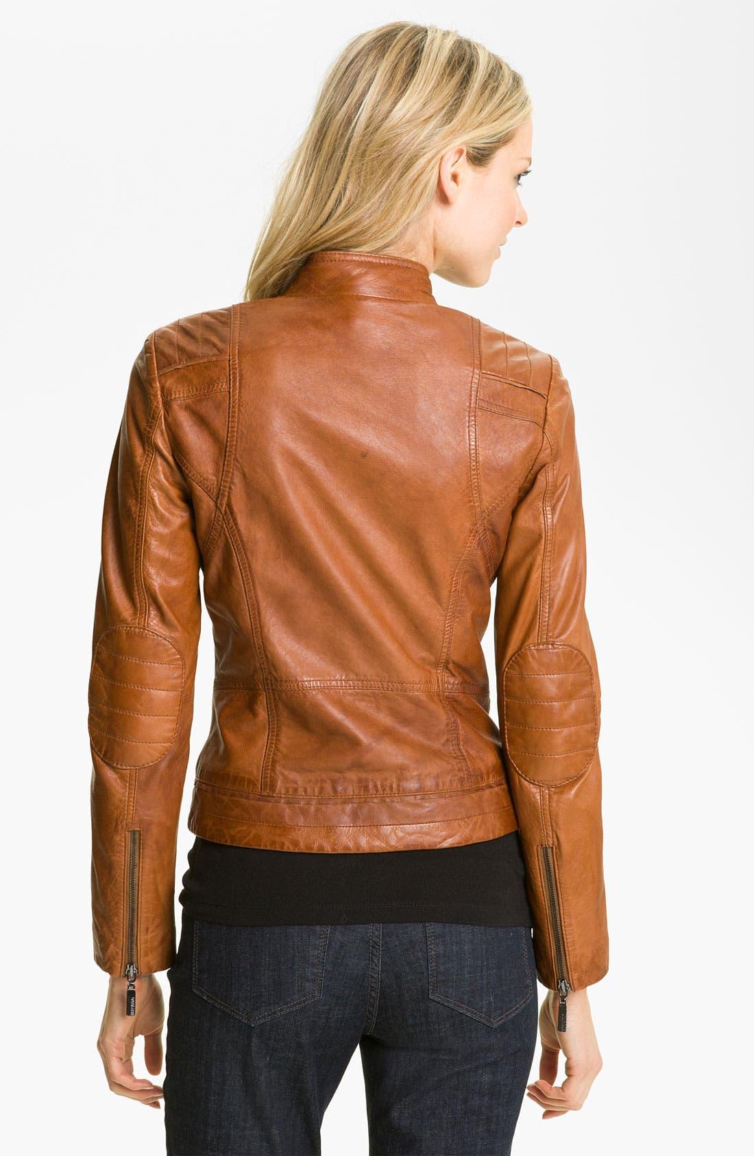 Alternate Image 2  - Bernardo Quilted Trim Leather Scuba Jacket