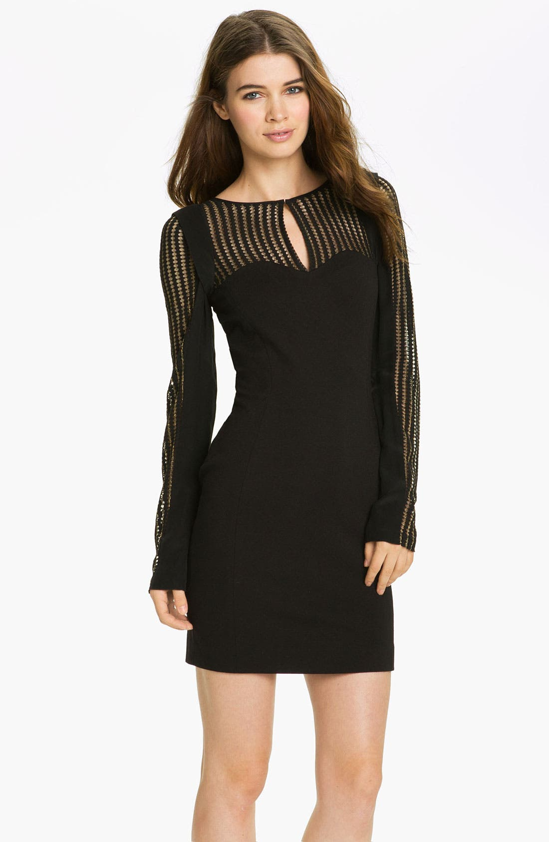 Alternate Image 1 Selected - Rebecca Minkoff 'Lilia' Mesh Panel Sweetheart Dress