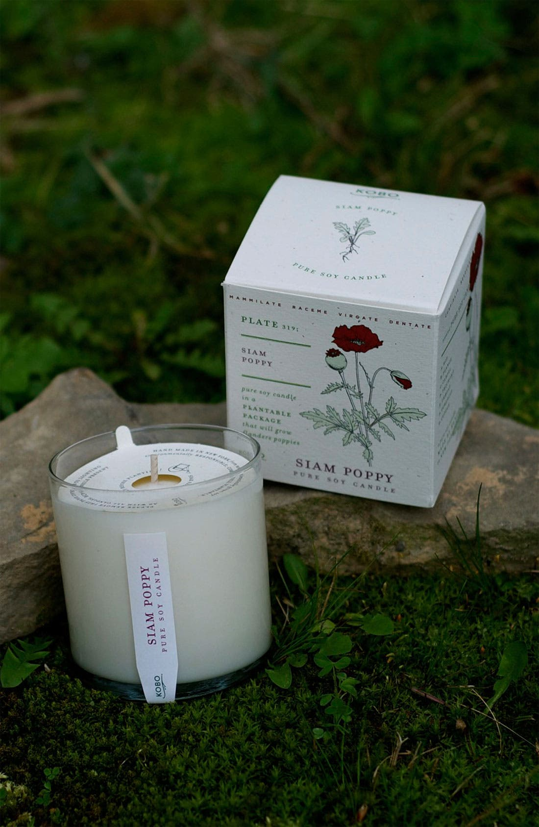 Alternate Image 2  - Kobo 'Seeds Collection' Soy Candle