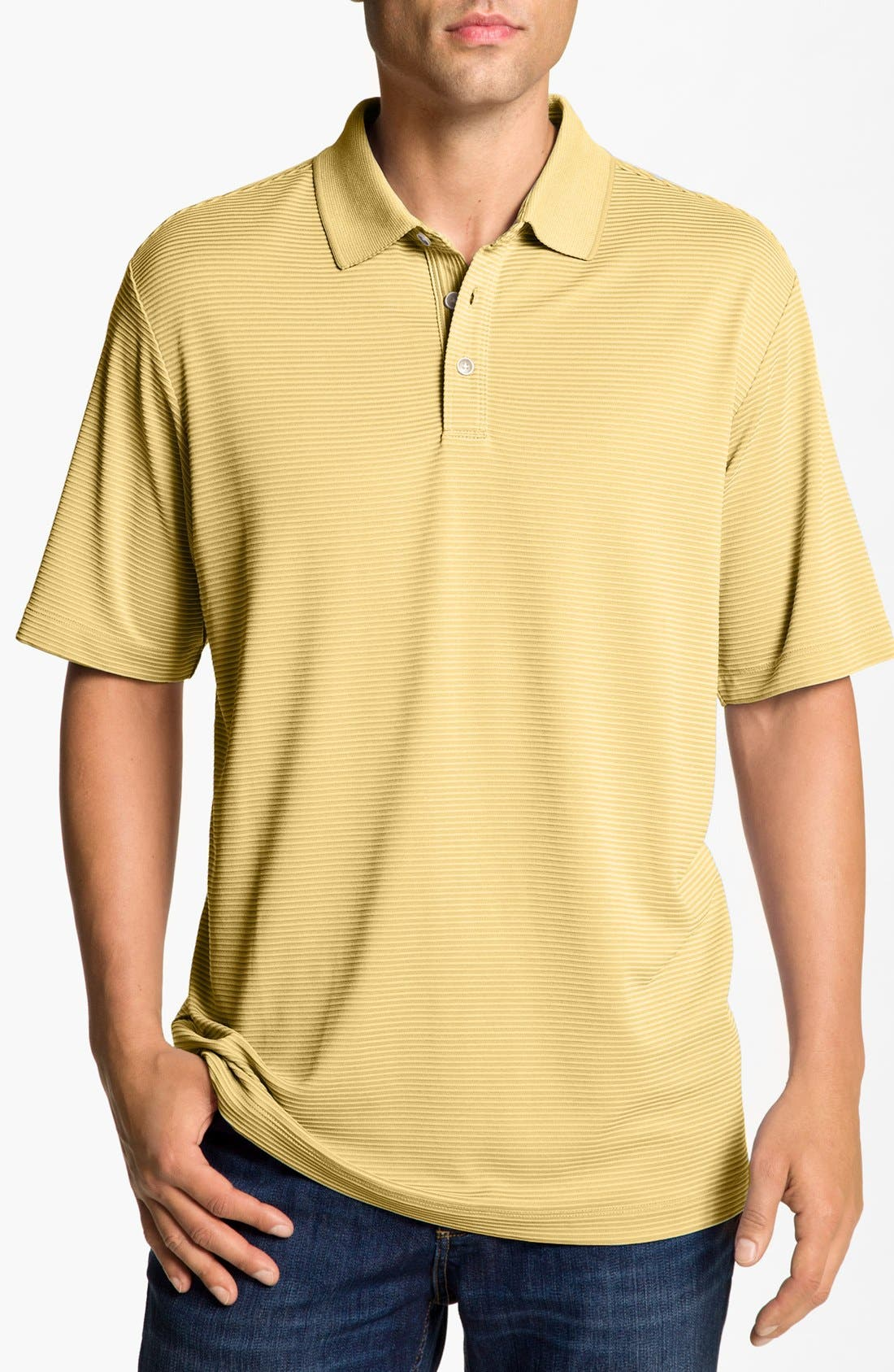 Alternate Image 1 Selected - Tommy Bahama 'Superfecta' Stripe Polo