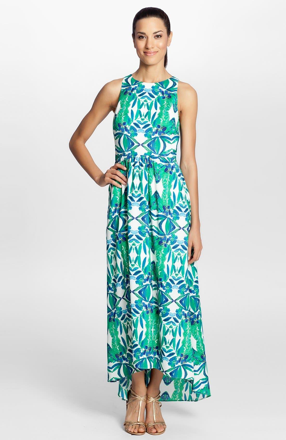 Alternate Image 1 Selected - Cynthia Steffe 'Sydney' Print Maxi Dress