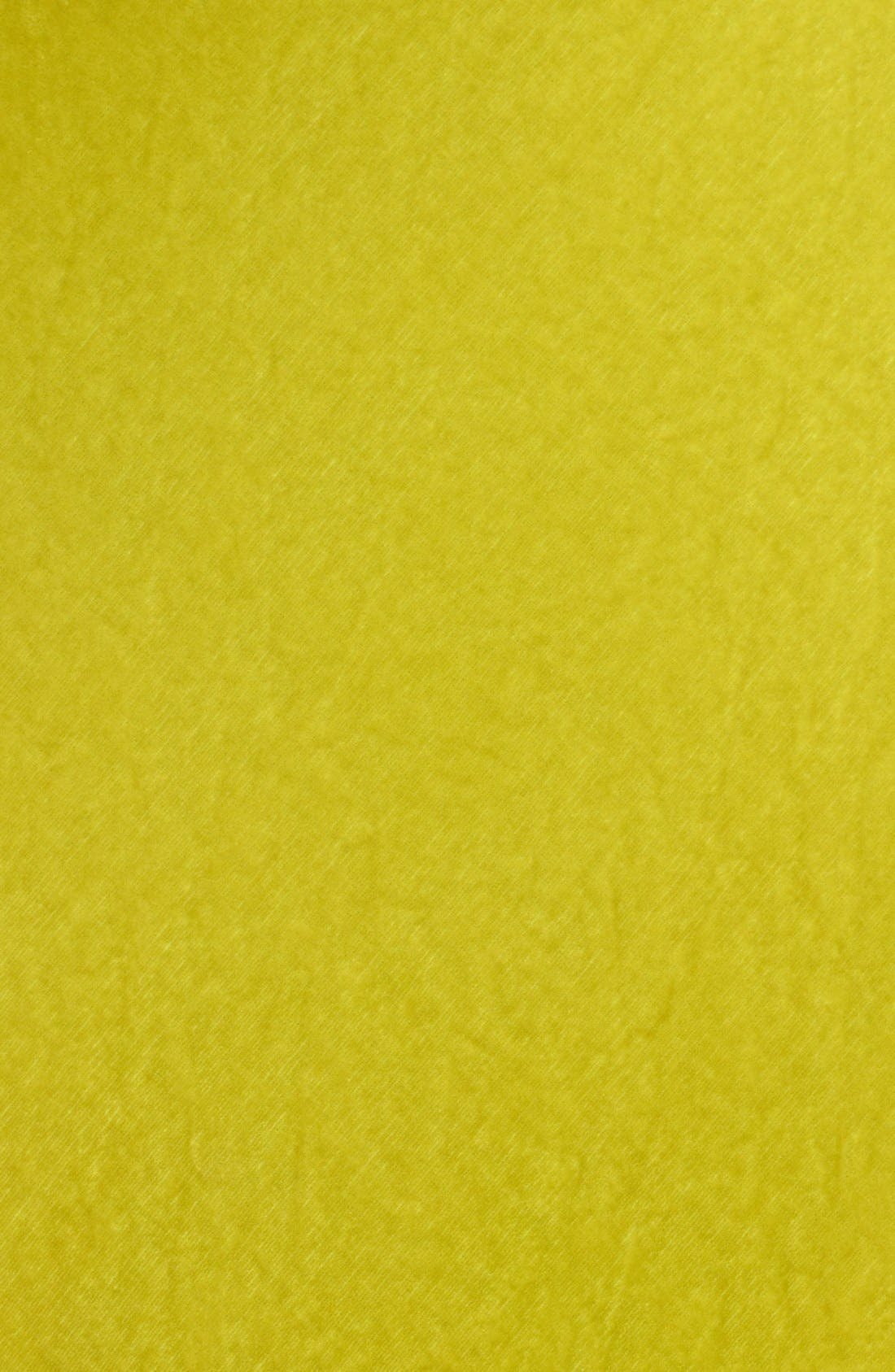 Alternate Image 3  - Oscar de la Renta Draped Velvet Gown