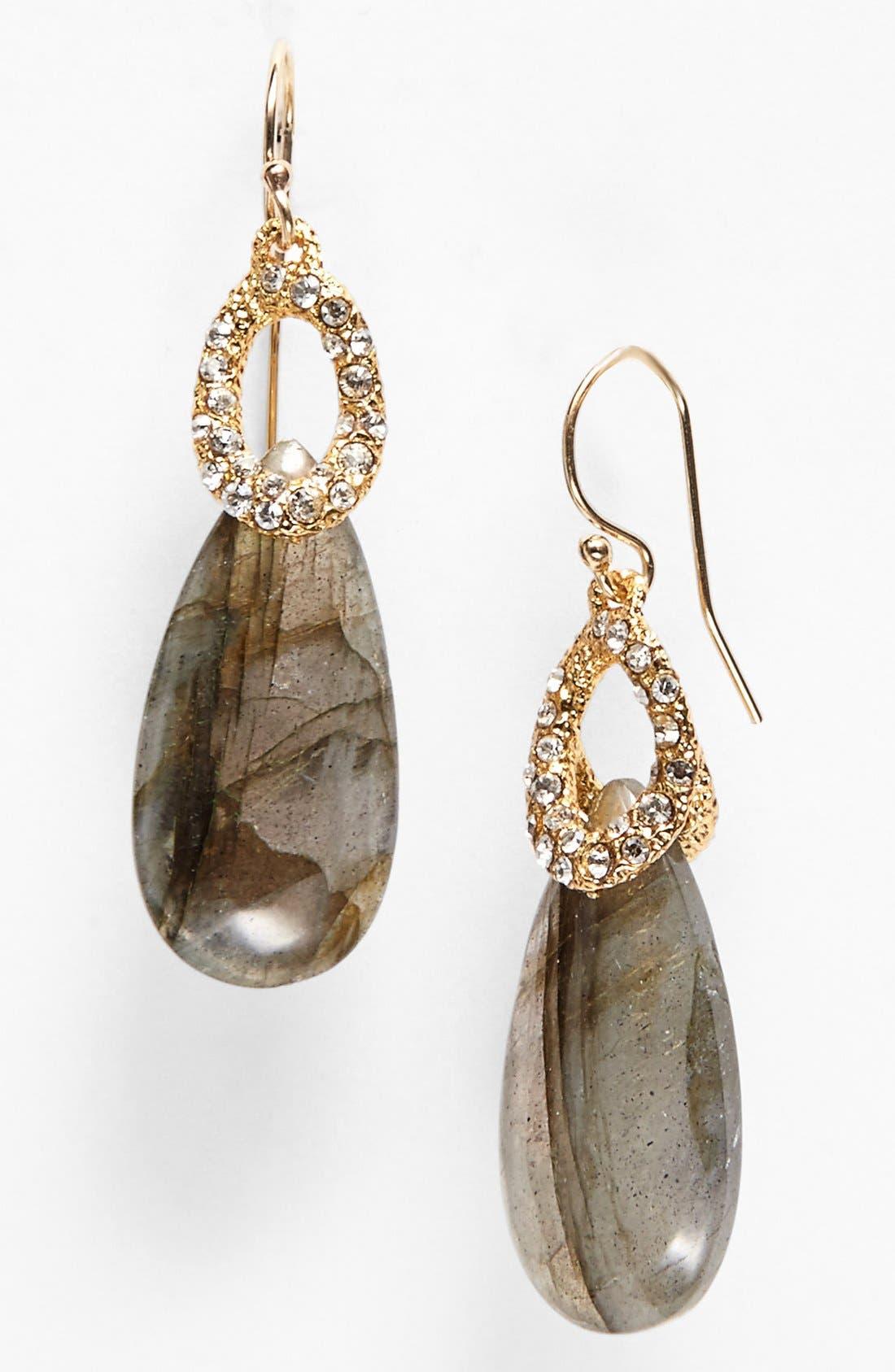 Alternate Image 1 Selected - Alexis Bittar 'Elements' Stone Teardrop Earrings