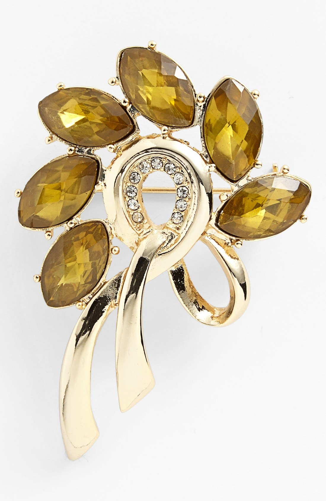 Alternate Image 1 Selected - Anne Klein Stone Statement Pin