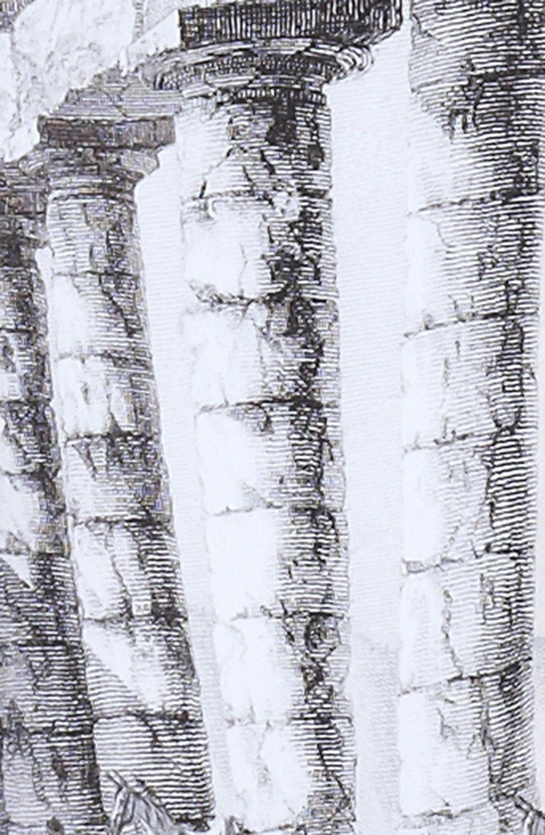 Alternate Image 3  - Dolce&Gabbana Temple Print Tank Dress